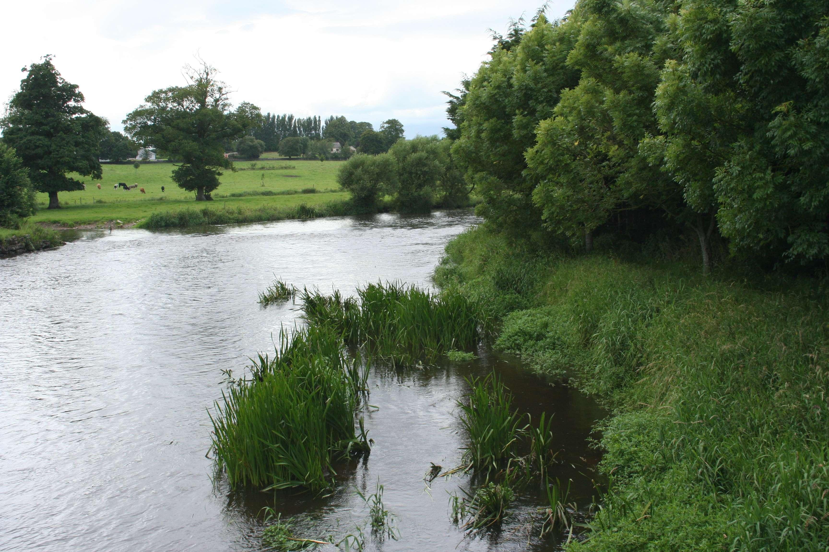 221 paysage irlandais
