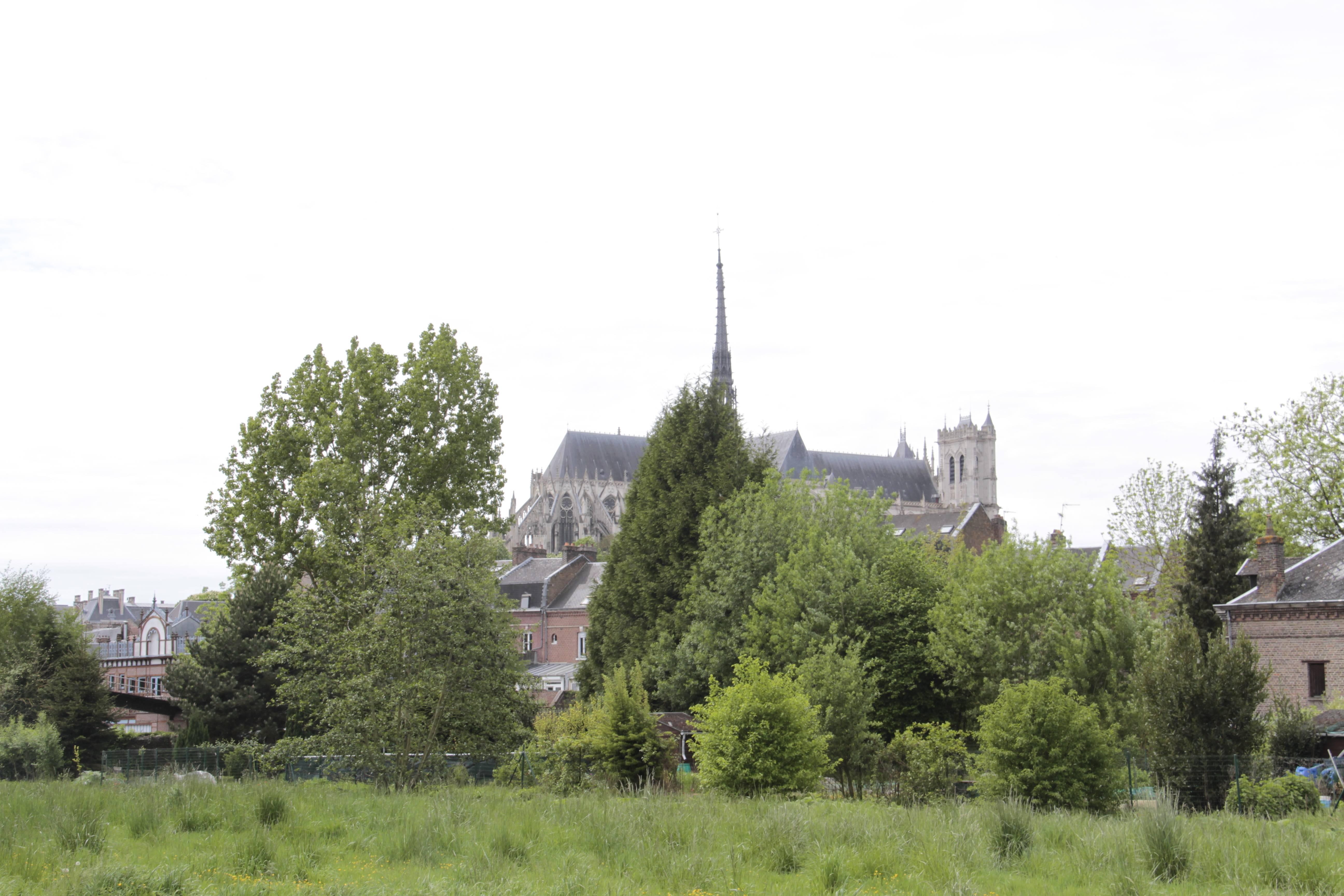 Baie de Somme mai 2015_0052 Amiens parc St Pierre et hortillonages