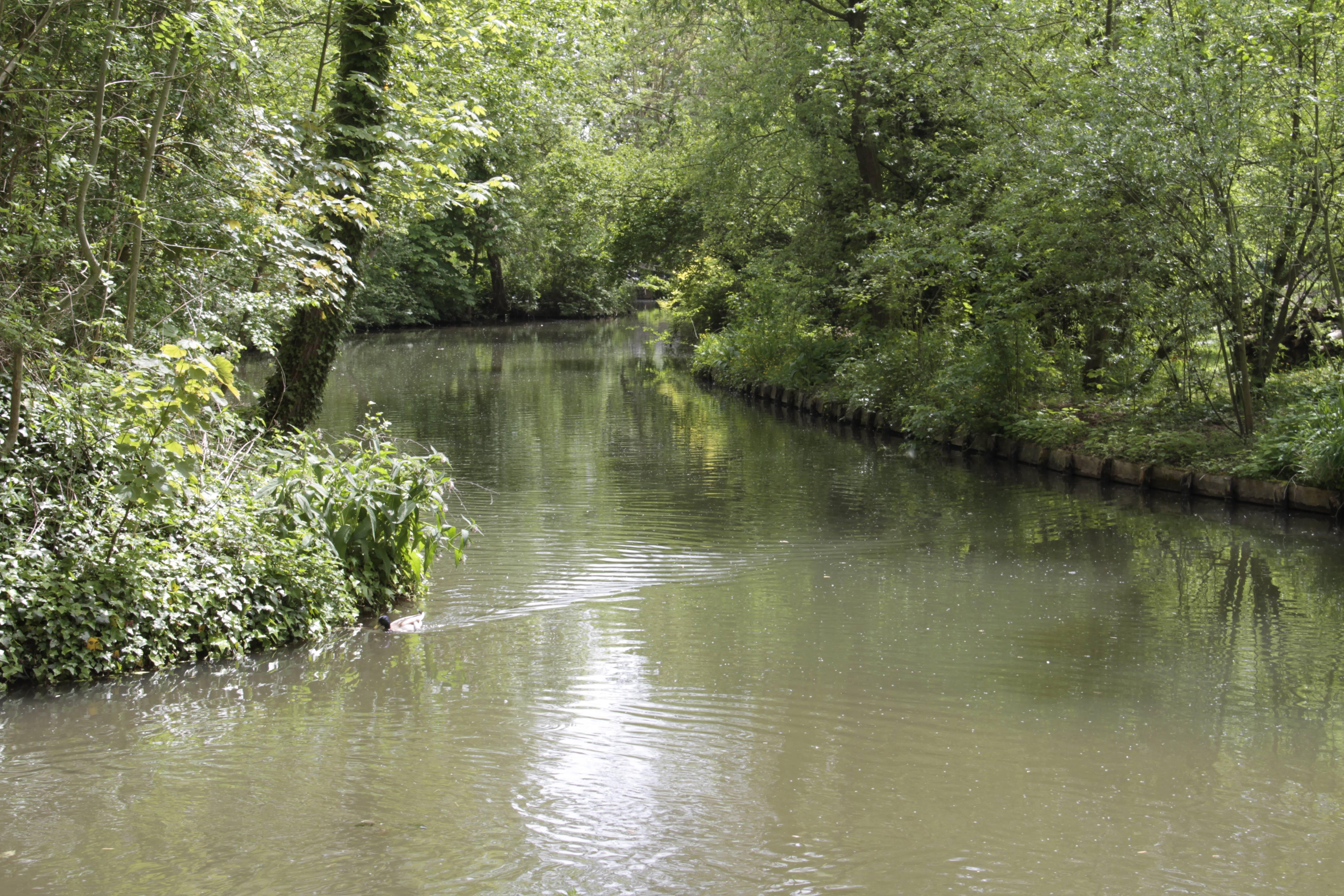 Baie de Somme mai 2015_0054 Amiens parc St Pierre et hortillonages