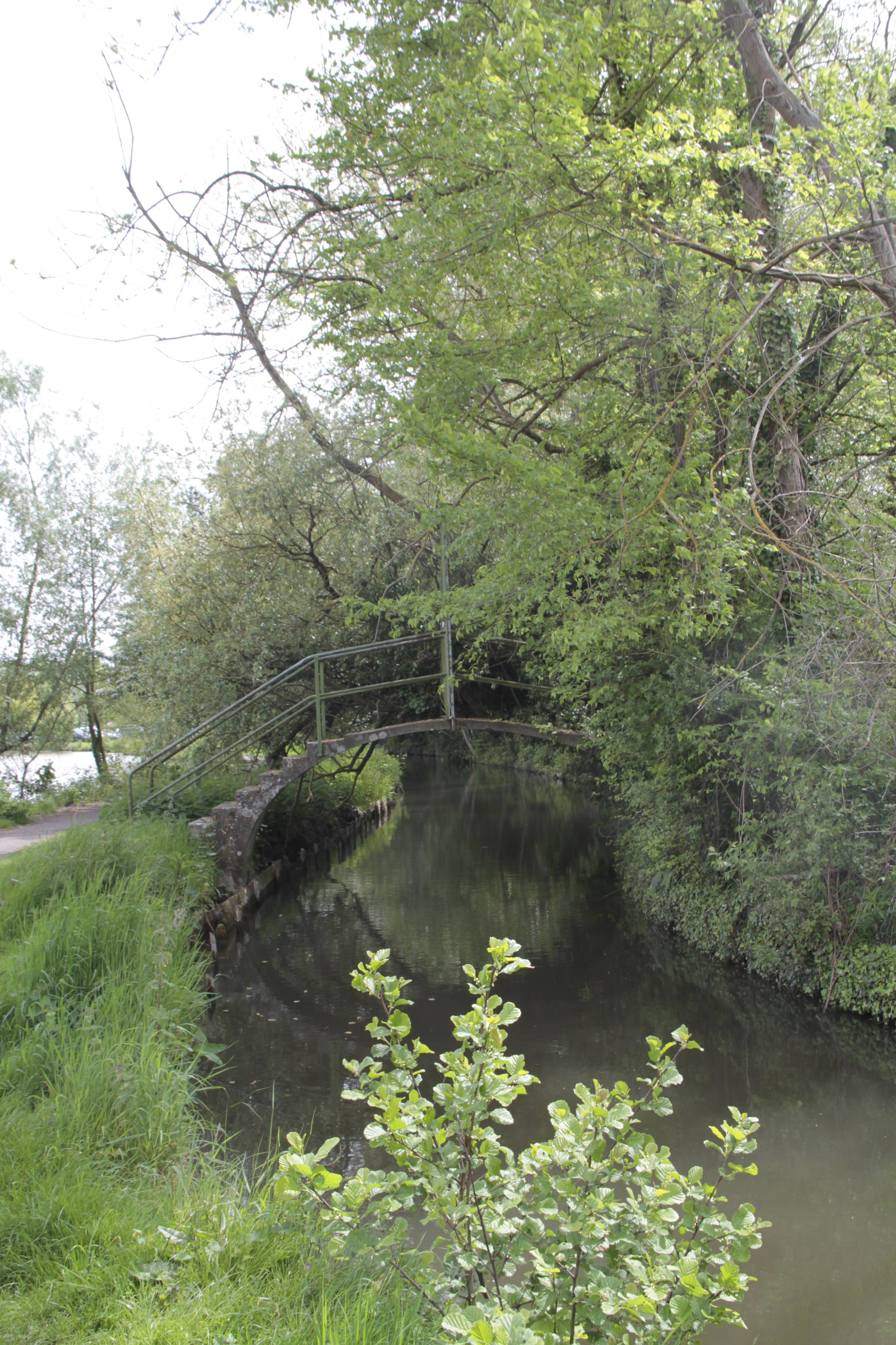 Baie de Somme mai 2015_0057 Amiens parc St Pierre et hortillonages