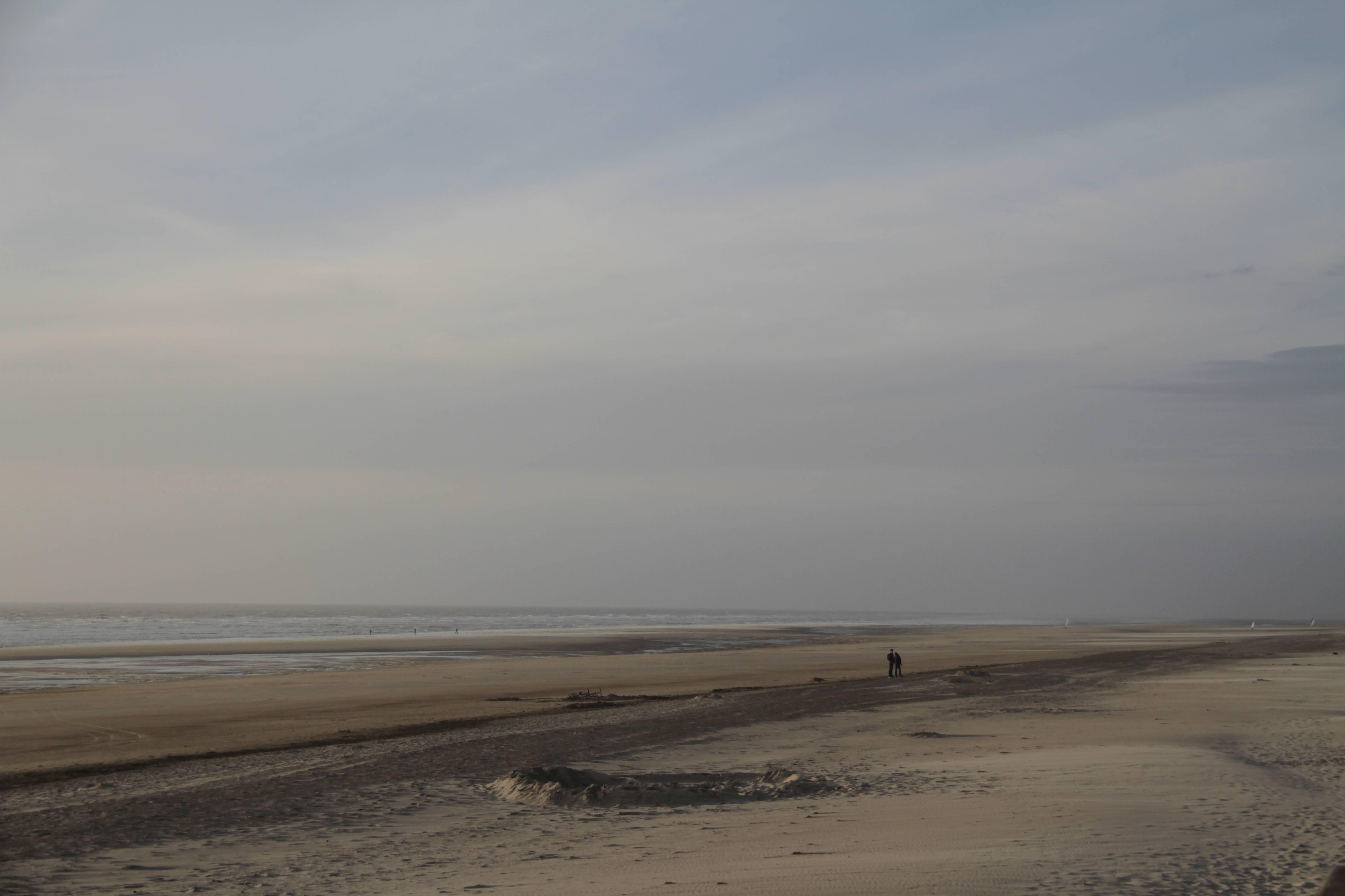 Baie de Somme mai 2015_0118