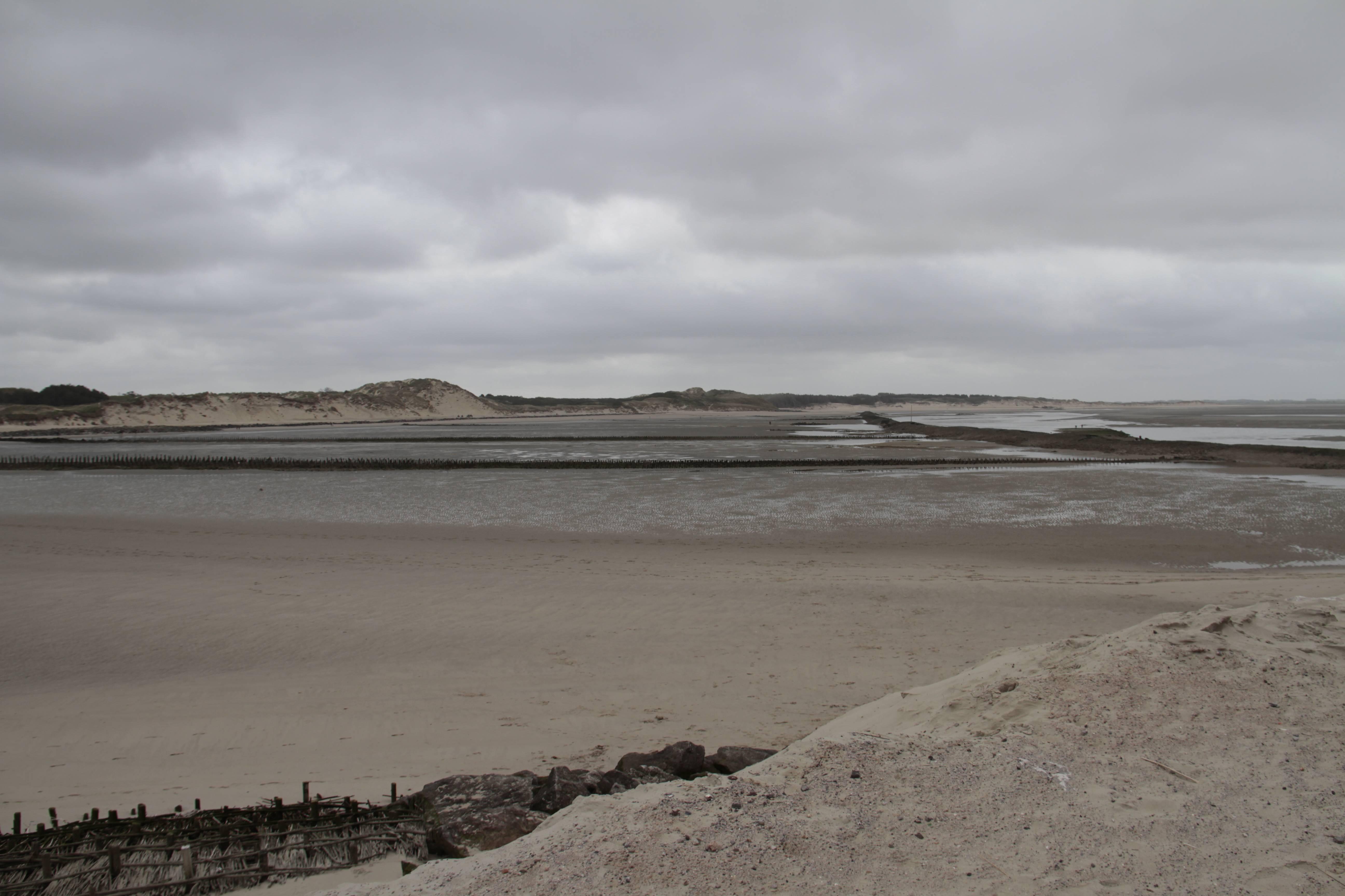 Baie de Somme mai 2015_0147 Berck sur mer Baie d'Authy