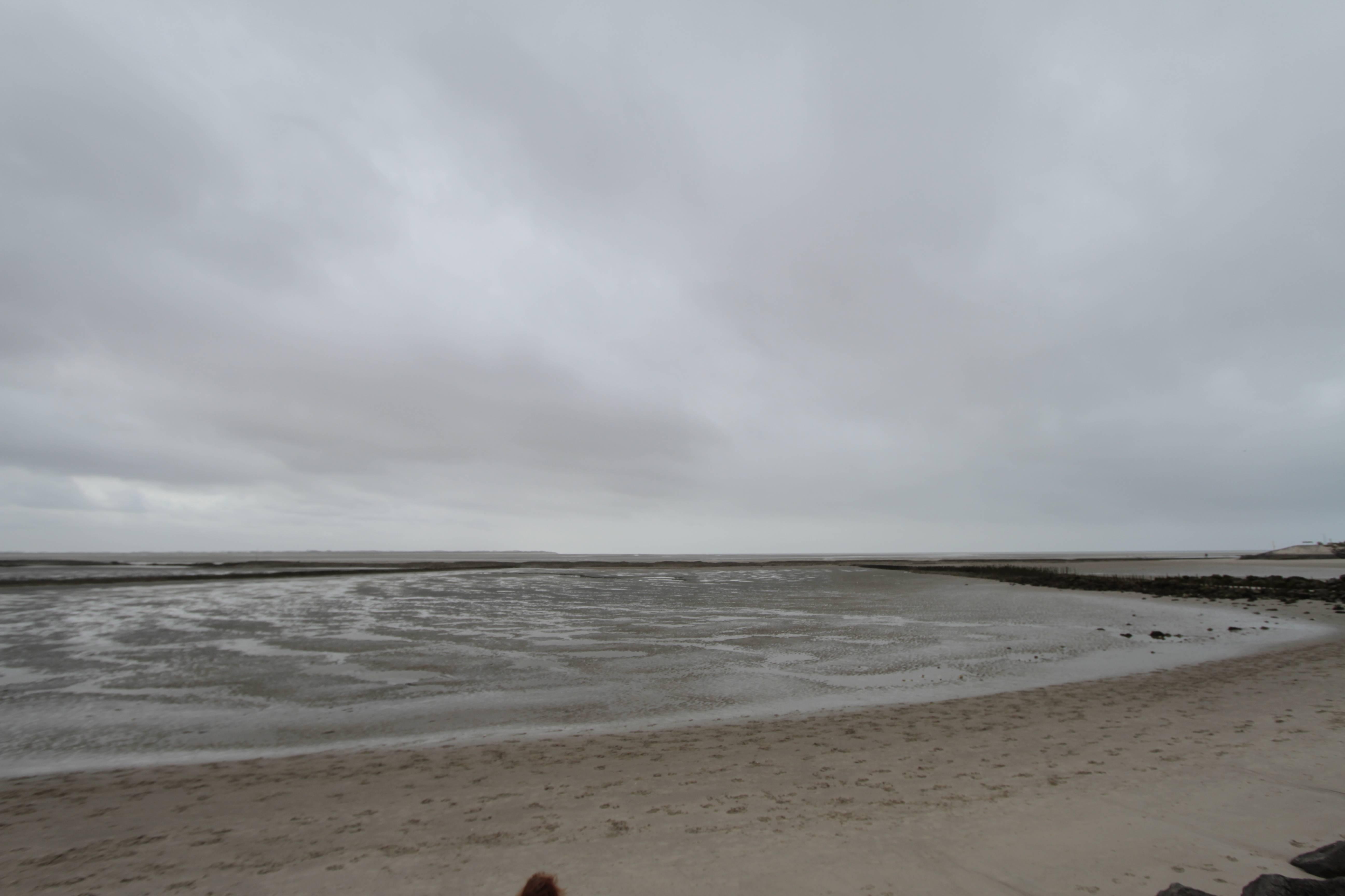 Baie de Somme mai 2015_0148 Berck sur mer Baie d'Authy