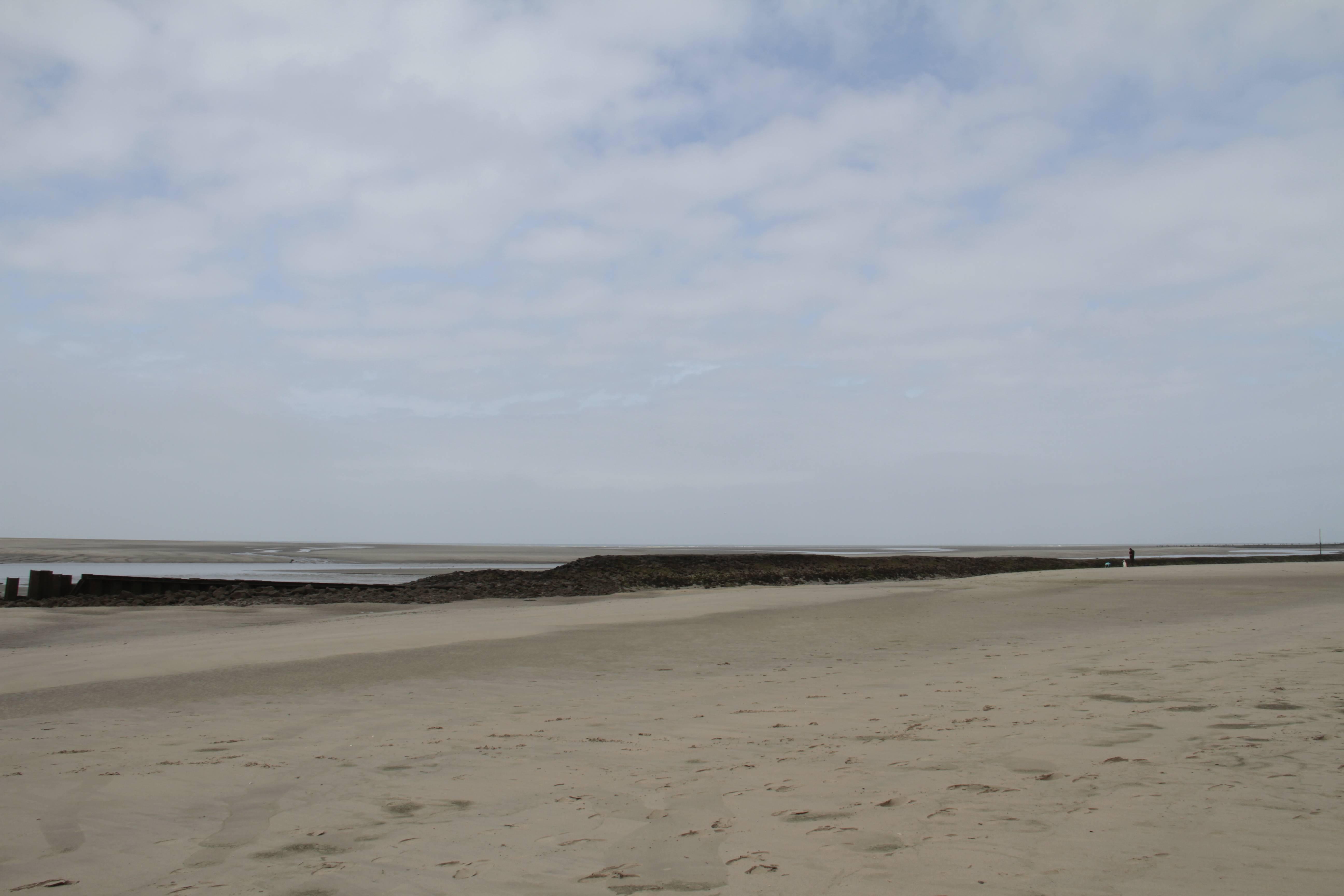 Baie de Somme mai 2015_0151 Berck sur mer Baie d'Authy