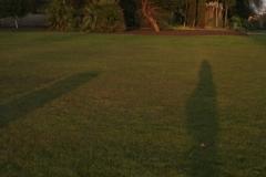 London regents park 27 02 2013