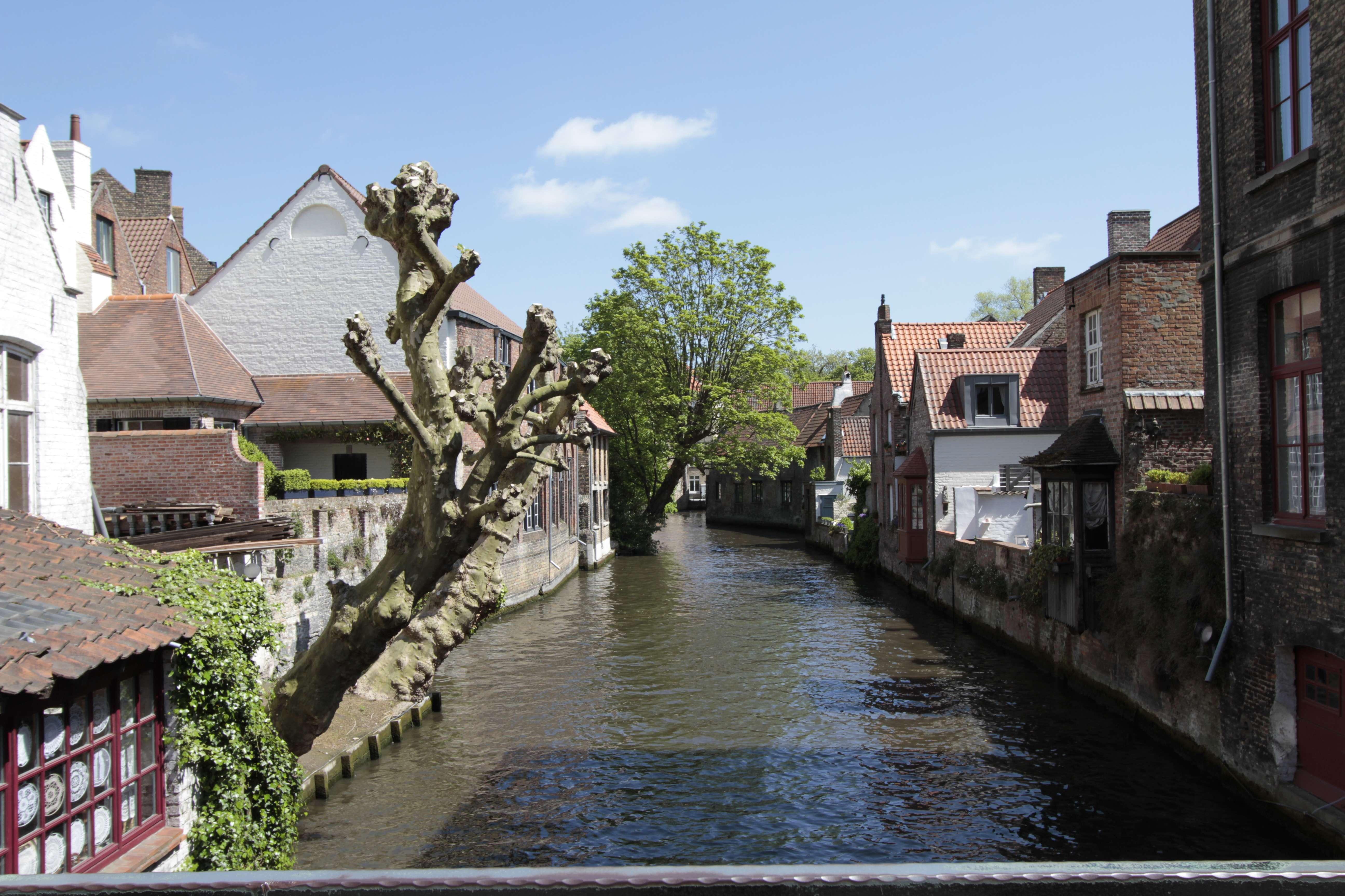 Belgique mai 2015_0143 Bruges entre beguinage et Markt