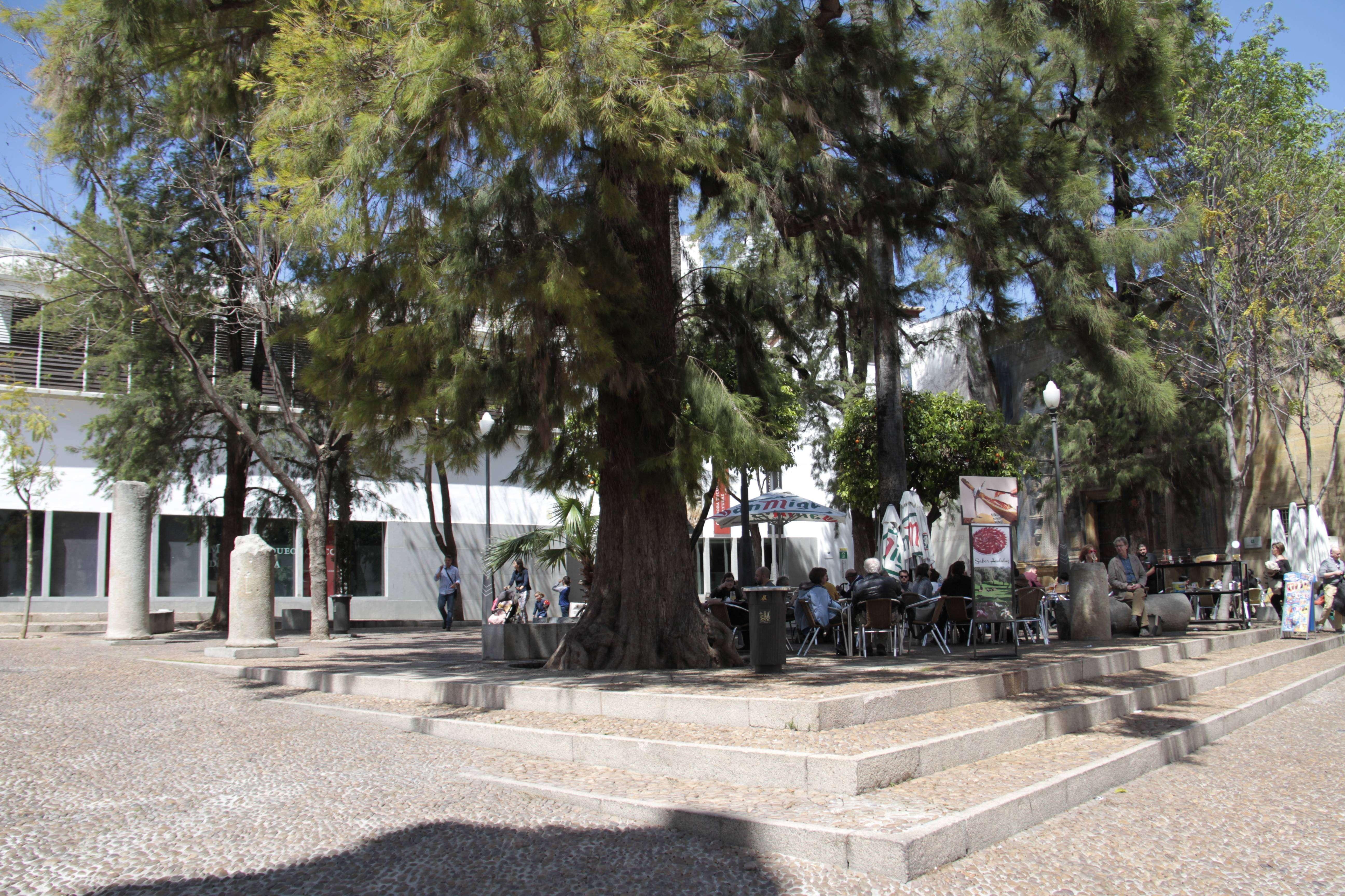 Andalousie _0239 Cordoba Plaza Paez