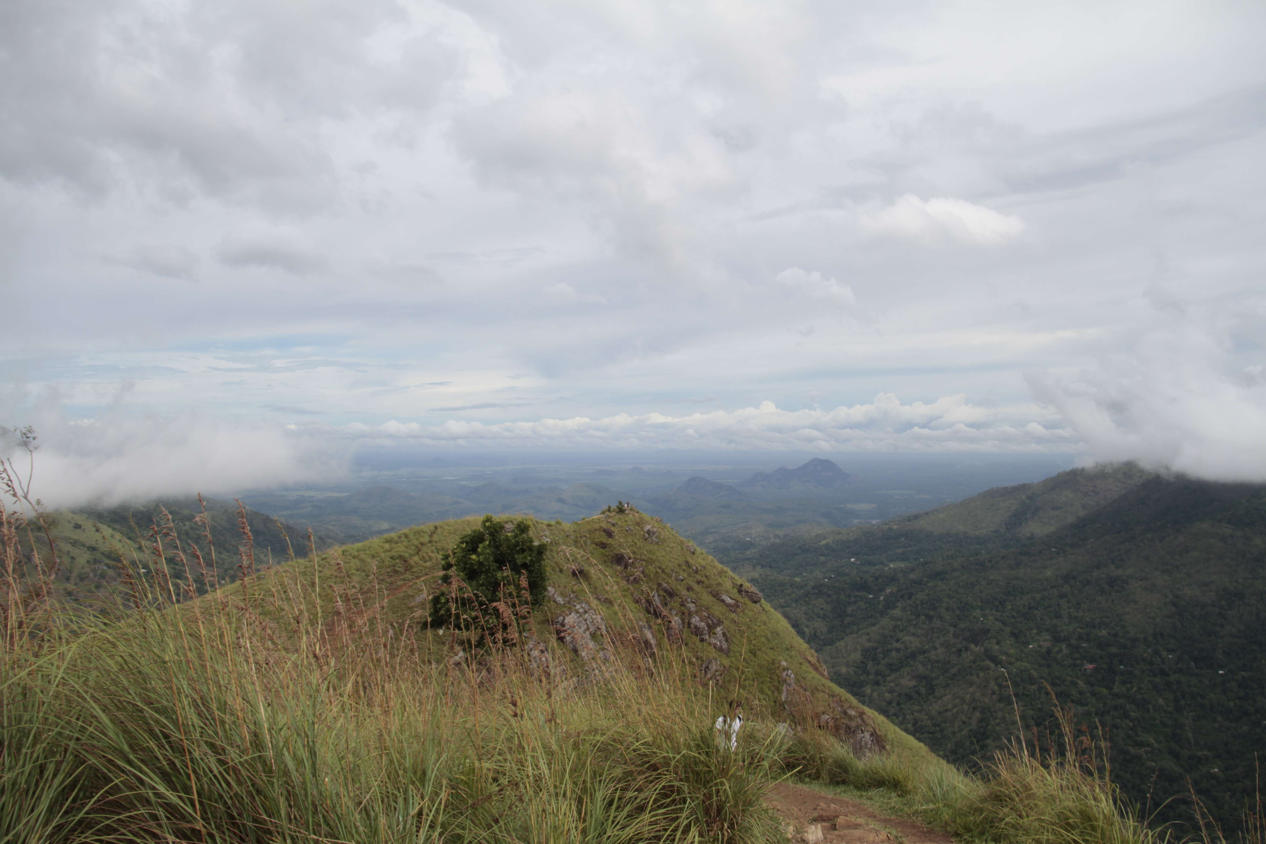 Sri Lanka aout 2017_0431 Little Adam s Peak