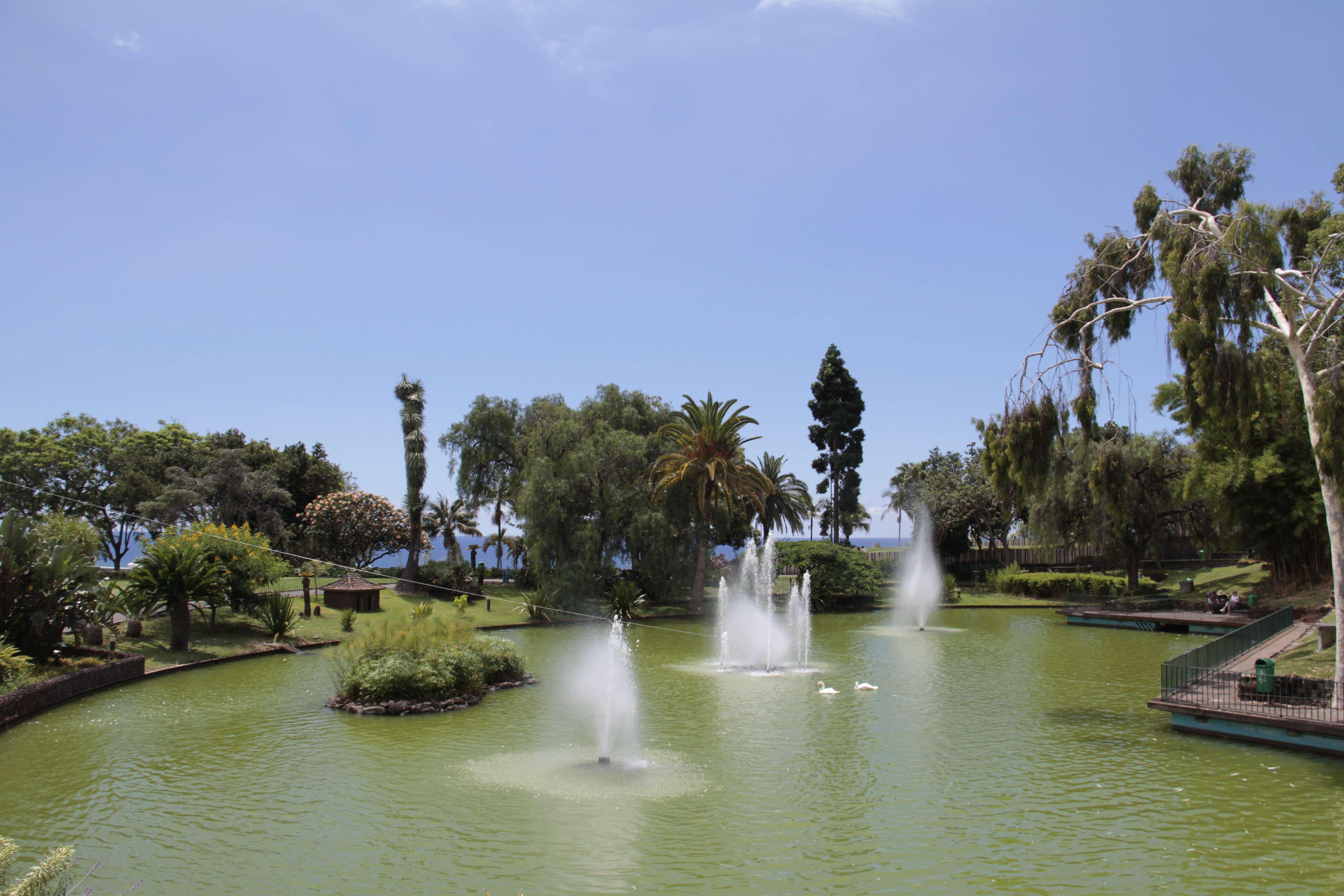 Madere aout 2019_0044 Funchal Parque de Santa Catarina