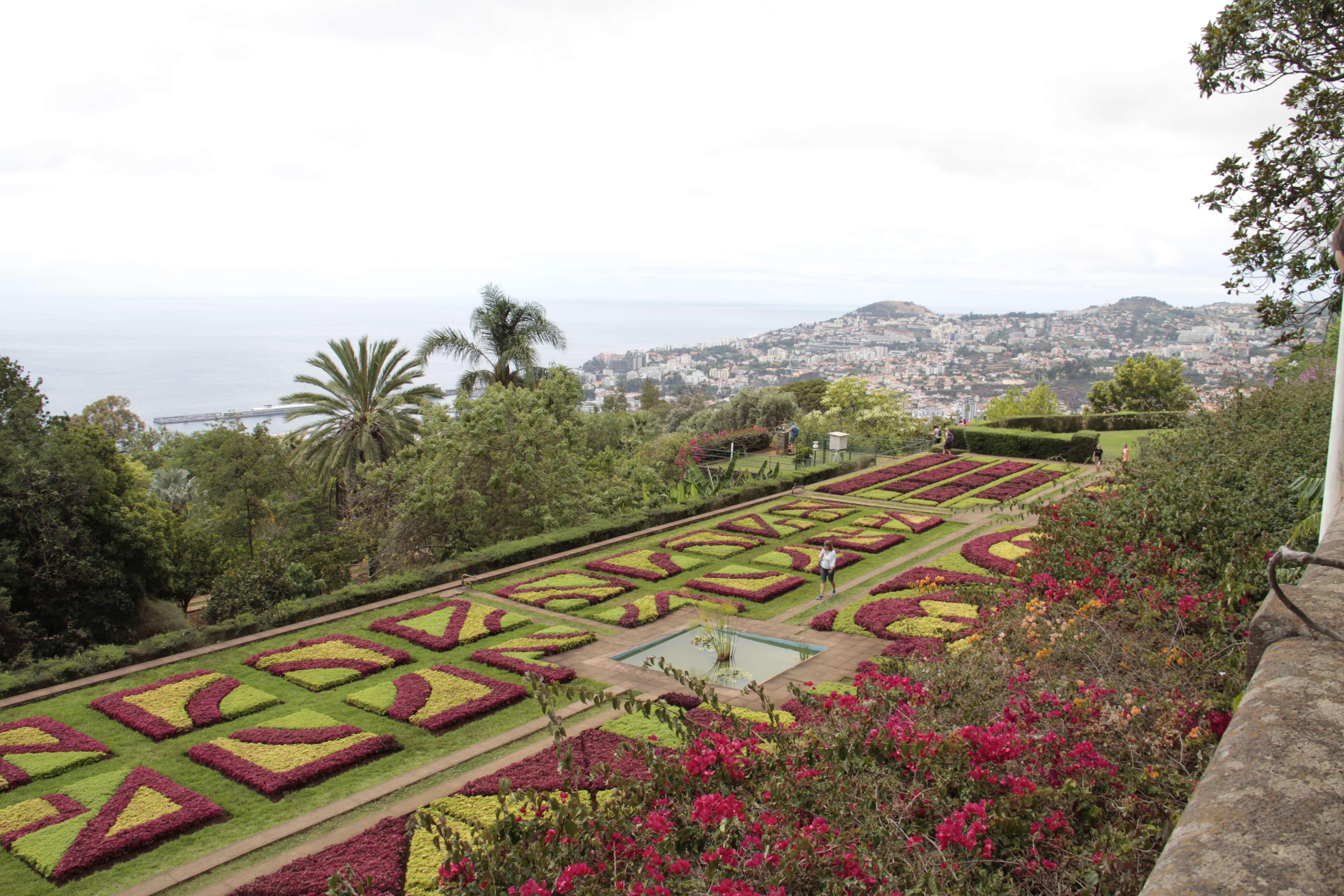 Madere aout 2019_0158 Funchal Jardim botanico