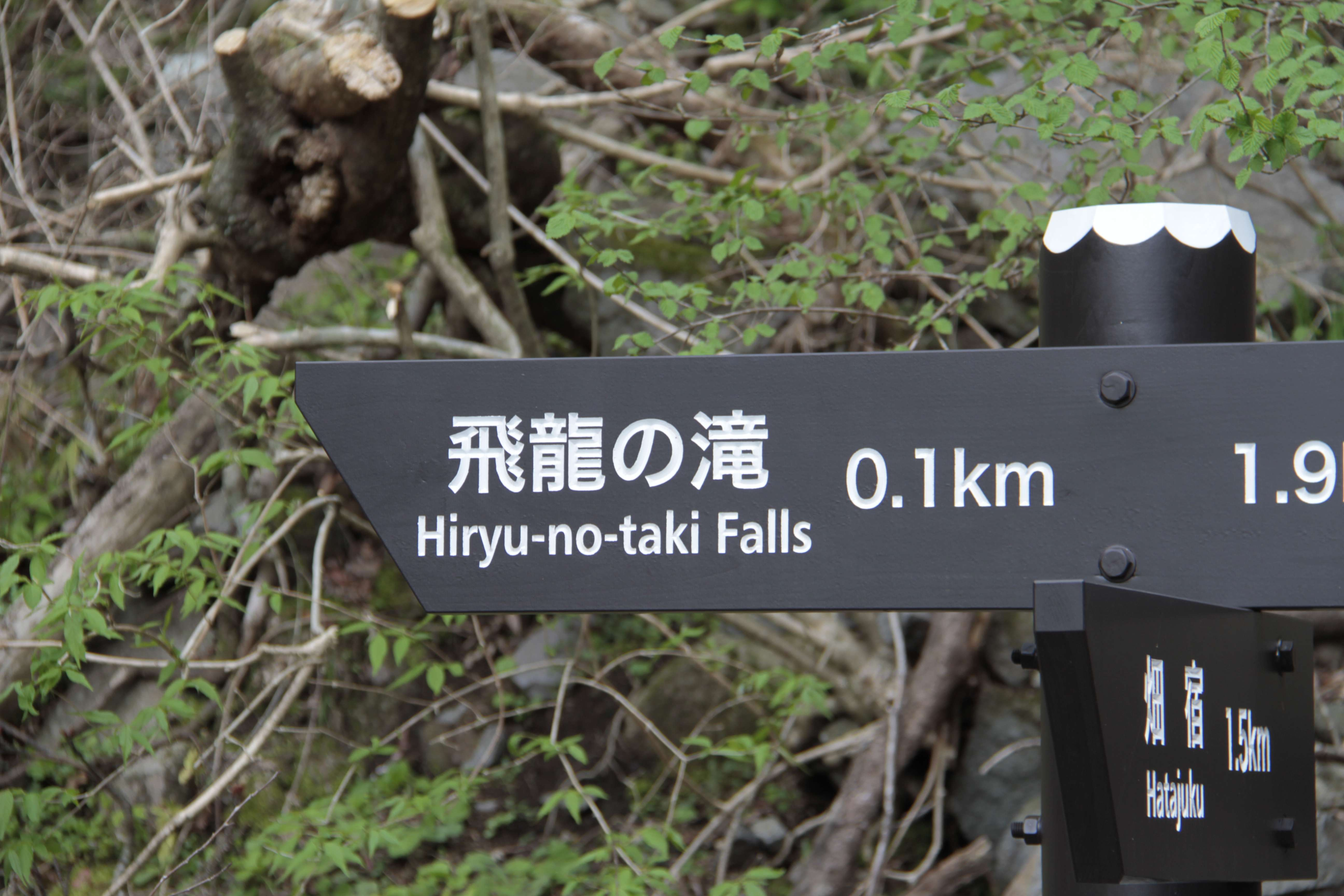 Japon avril 2017_0413 Hakone rando vers Hiryu