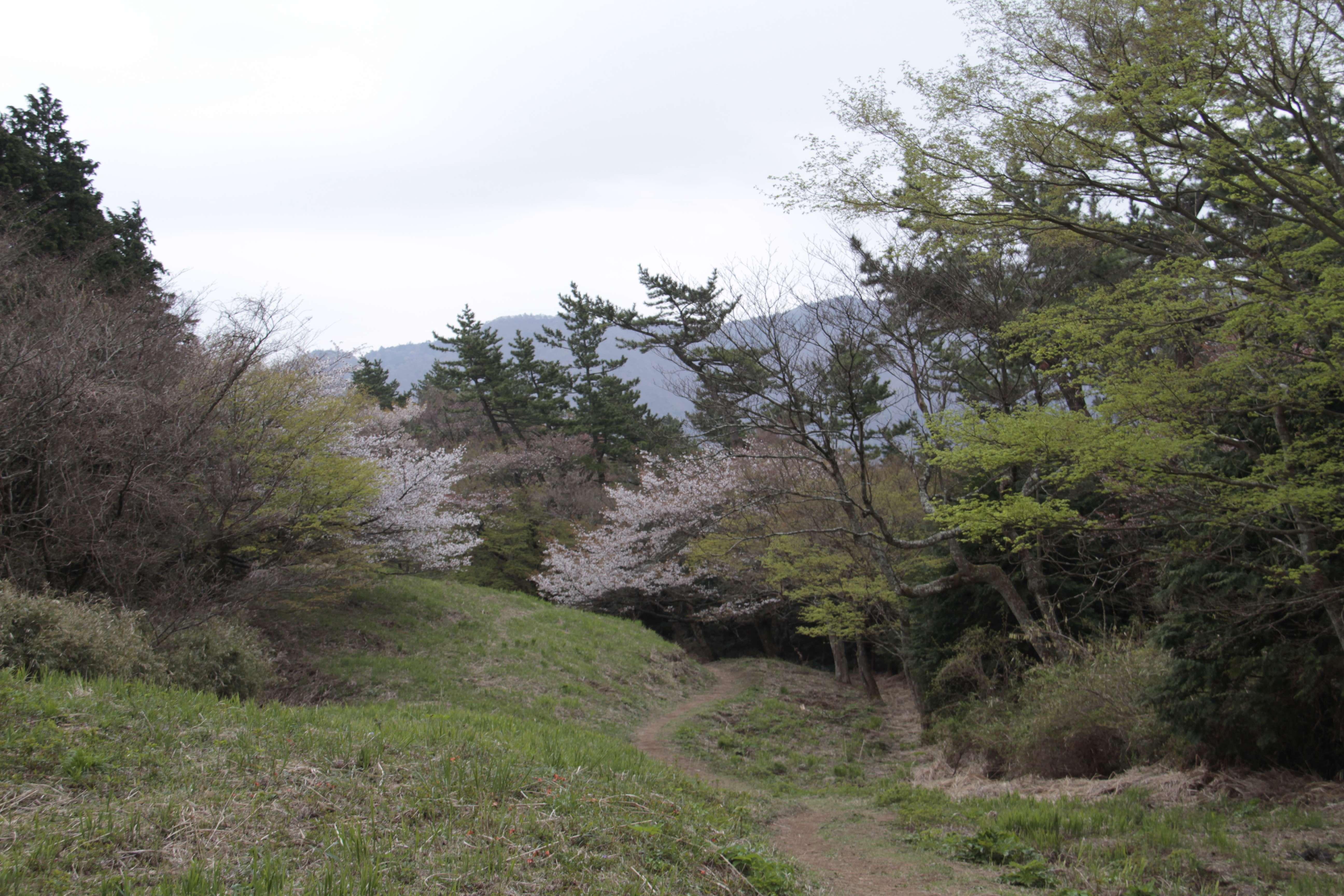 Japon avril 2017_0441 Hakone rando mont Asama