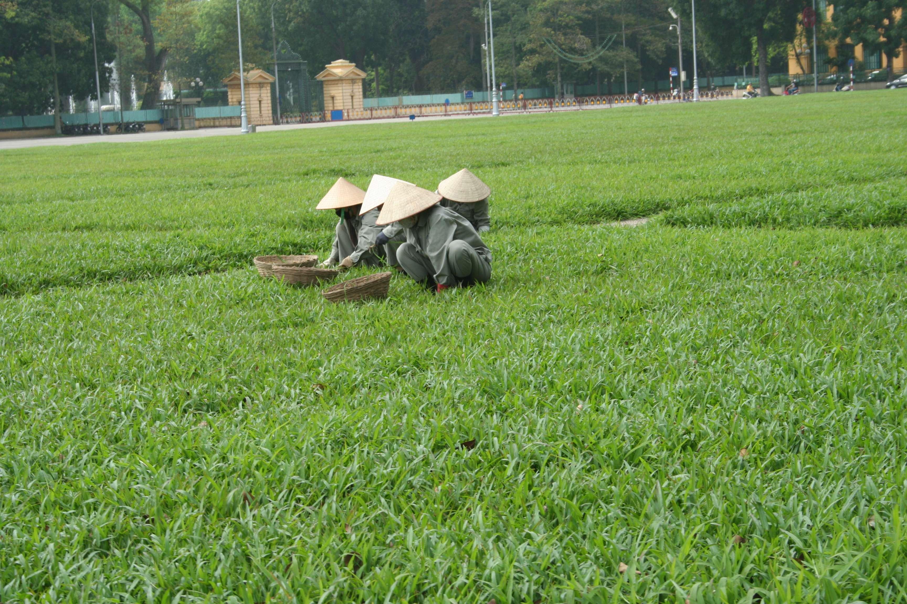 20120409_080 rue dans Hanoi