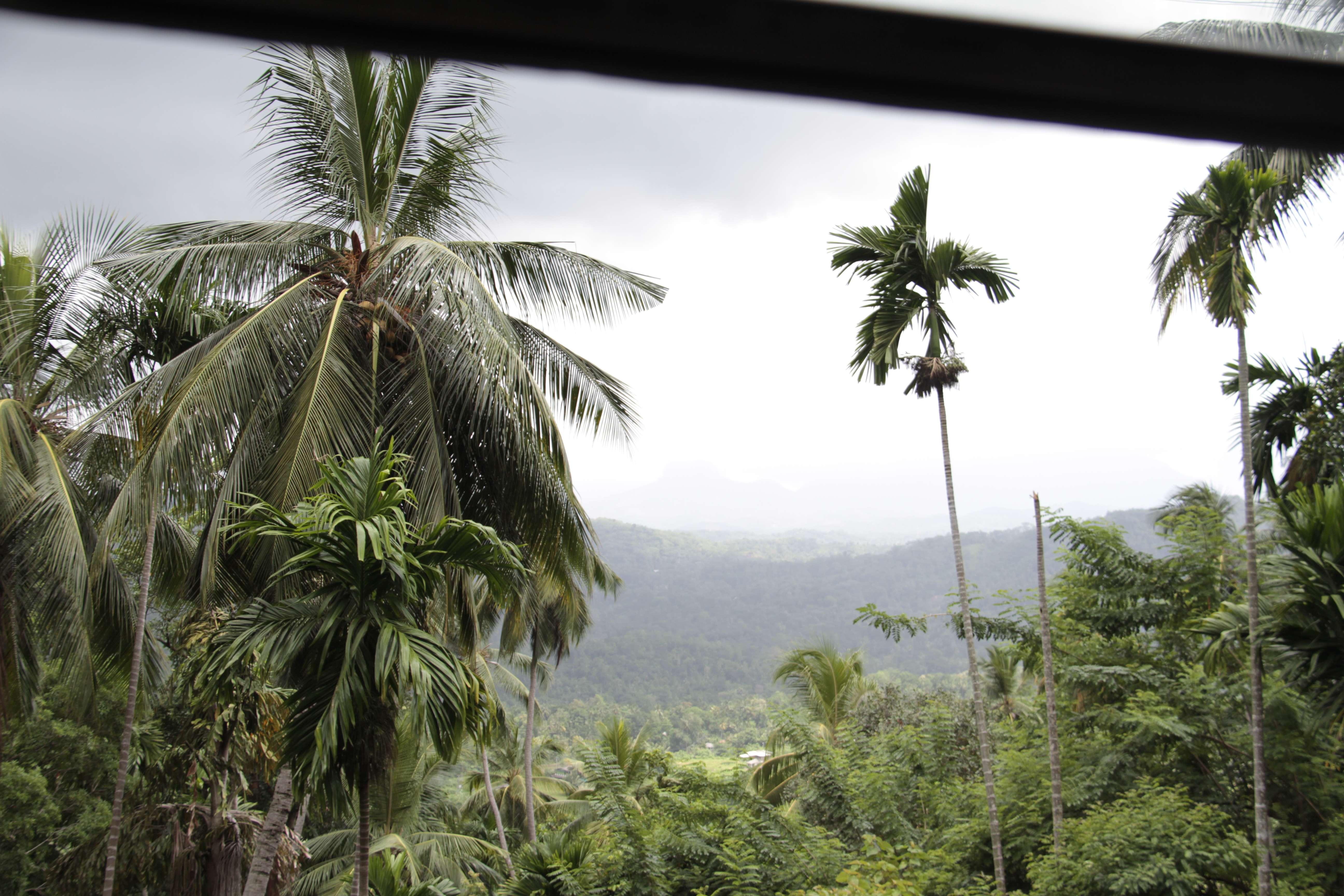 Sri Lanka aout 2017_0037 trajet Colombo Kandy
