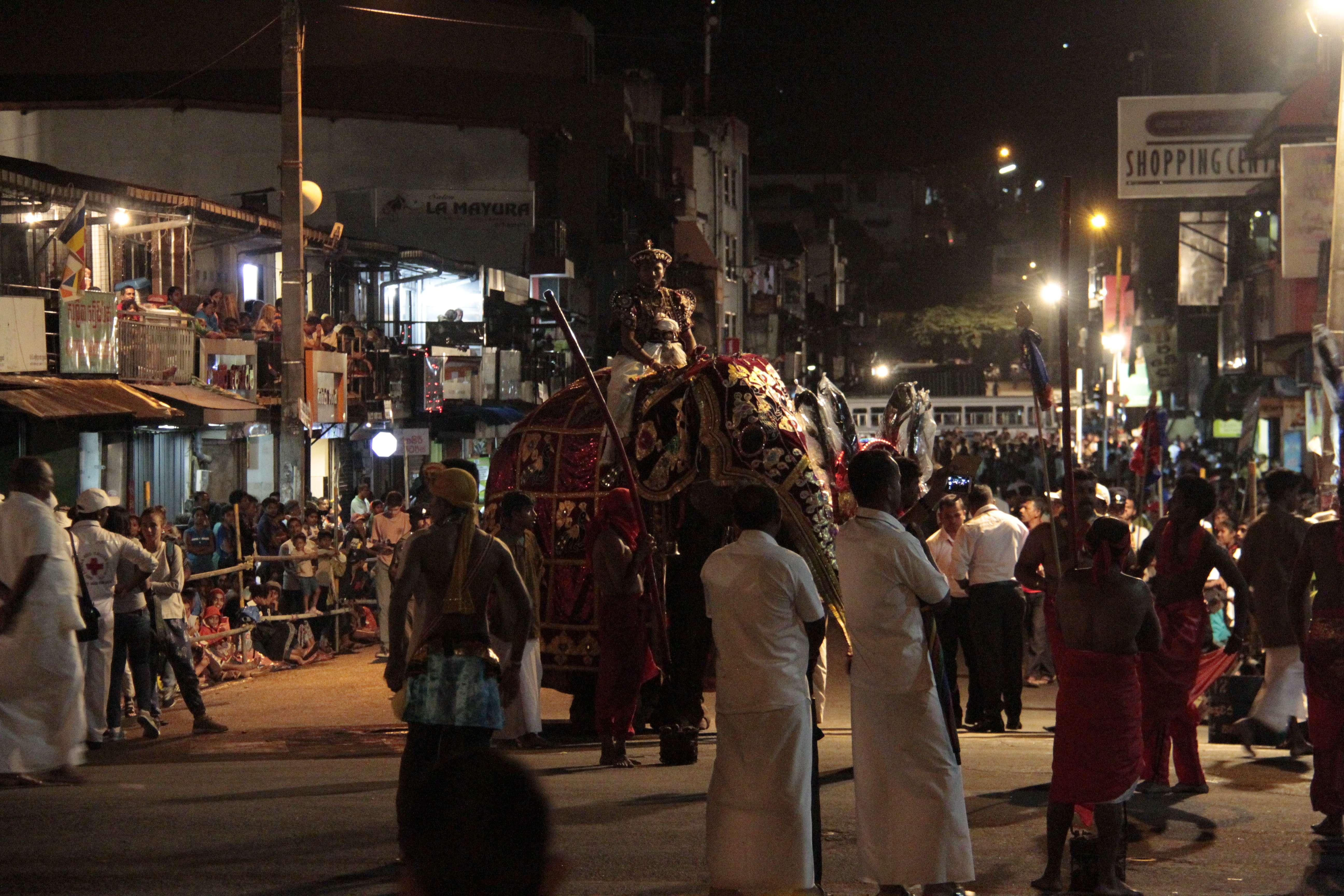 Sri Lanka aout 2017_0051 Kandy Esala Perahera