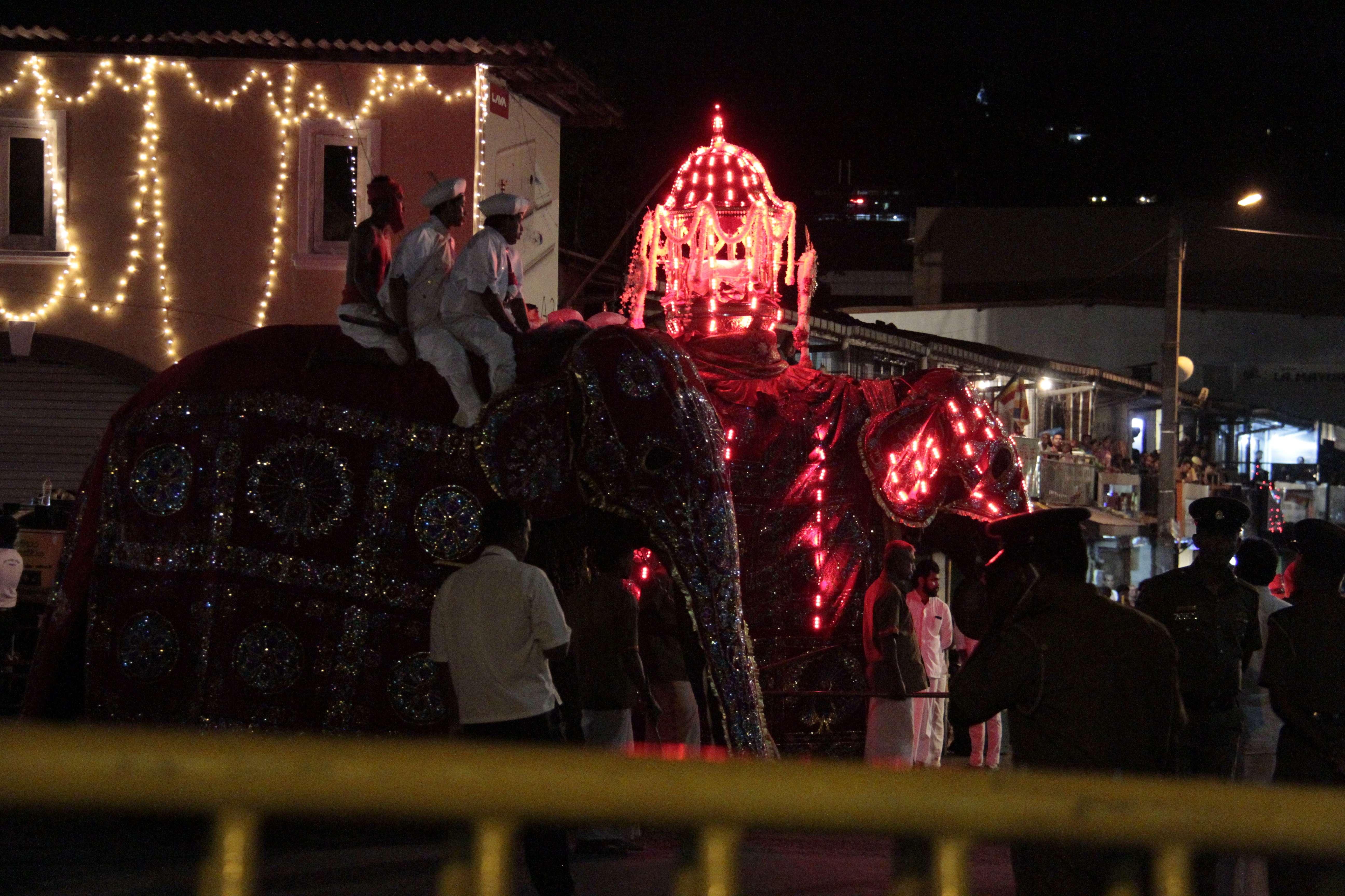 Sri Lanka aout 2017_0056 Kandy Esala Perahera