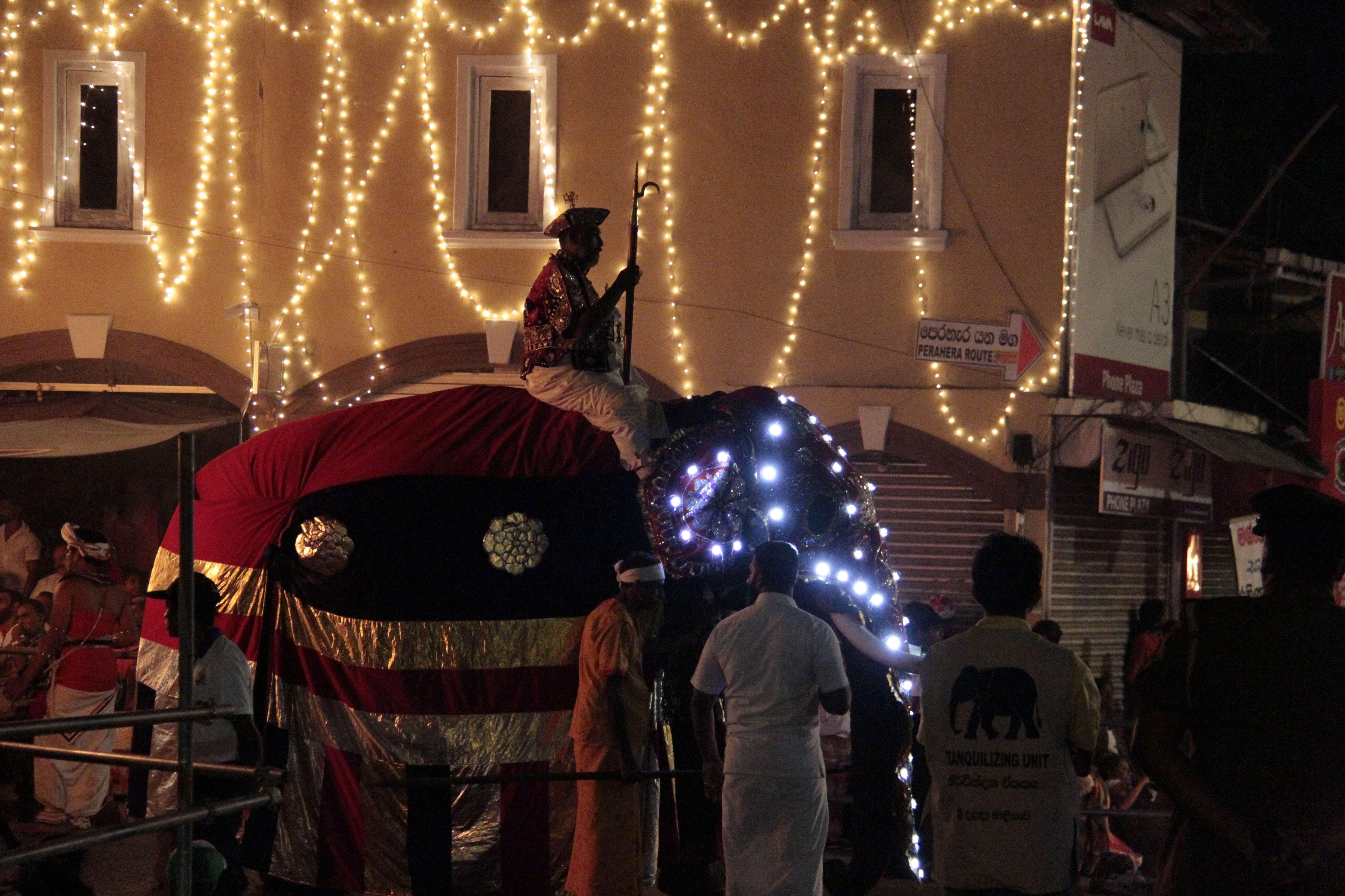 Sri Lanka aout 2017_0067 Kandy Esala Perahera