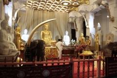 Sri Lanka aout 2017_0082 Kandy Sri Dalada Veediya tempke de la dent sacree