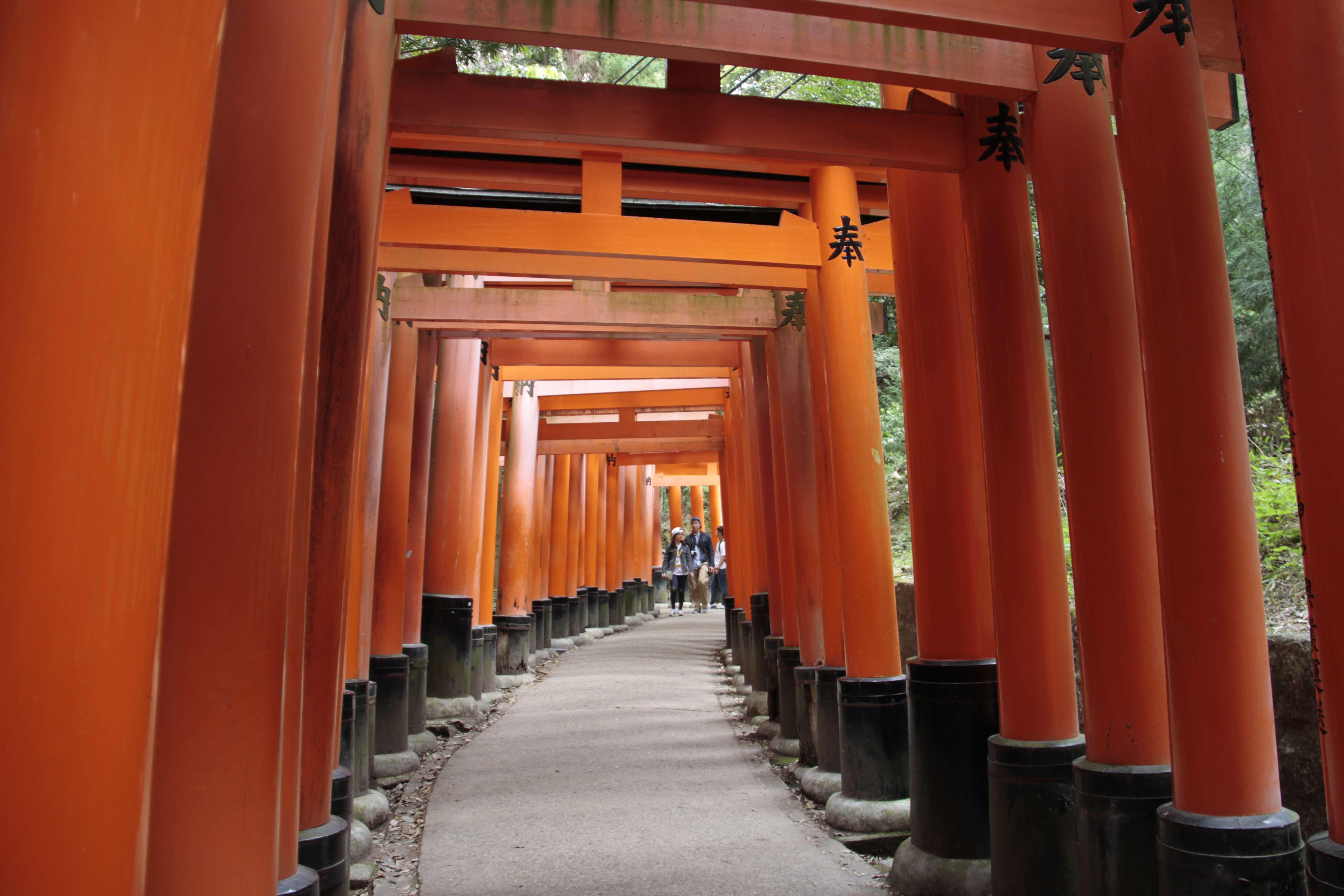 Japon avril 2017_0856 Kyoto sanctuaire shinto Fushimi Inari