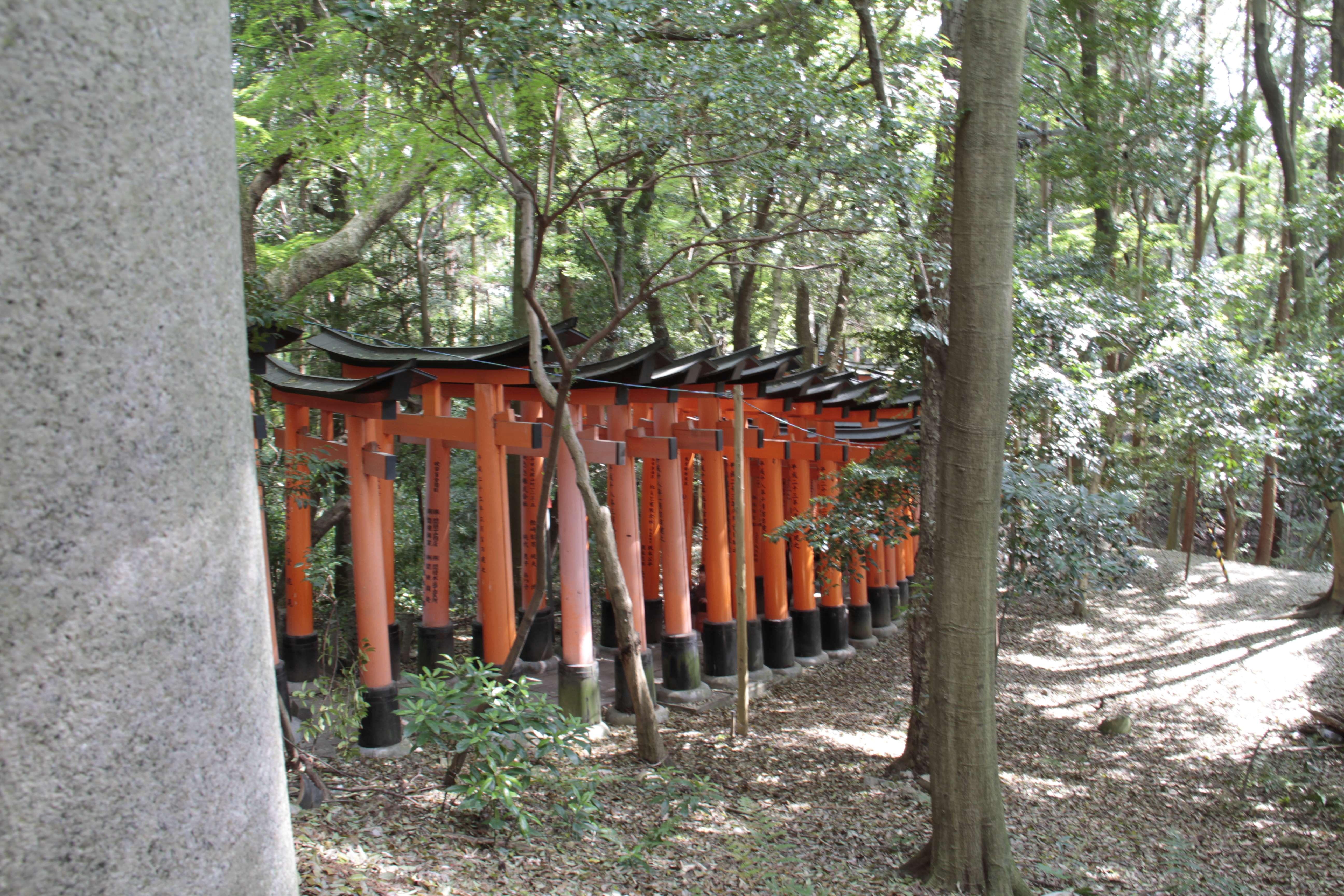 Japon avril 2017_0872 Kyoto sanctuaire shinto Fushimi Inari