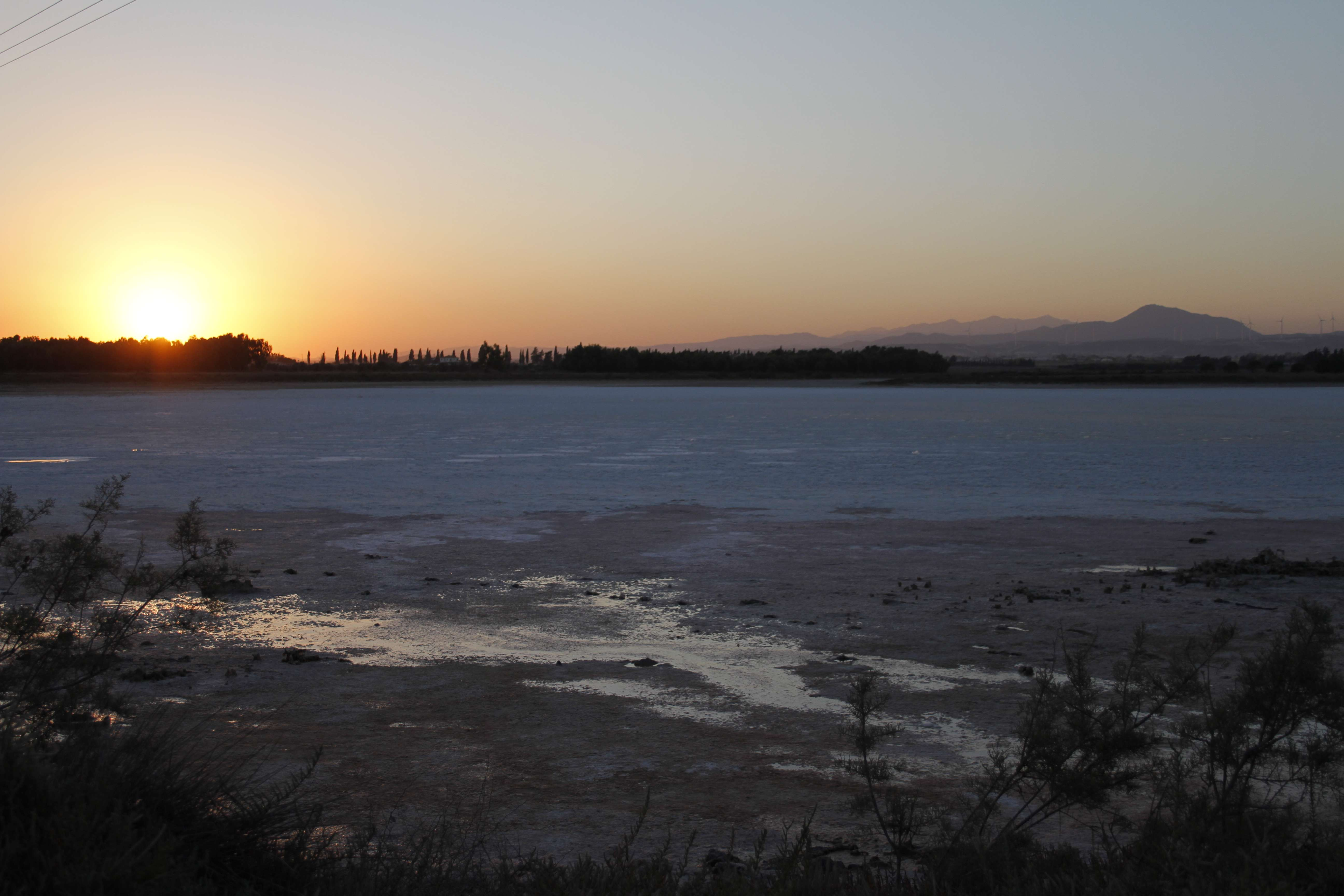 Chypre_0112 lac sale de Meneou