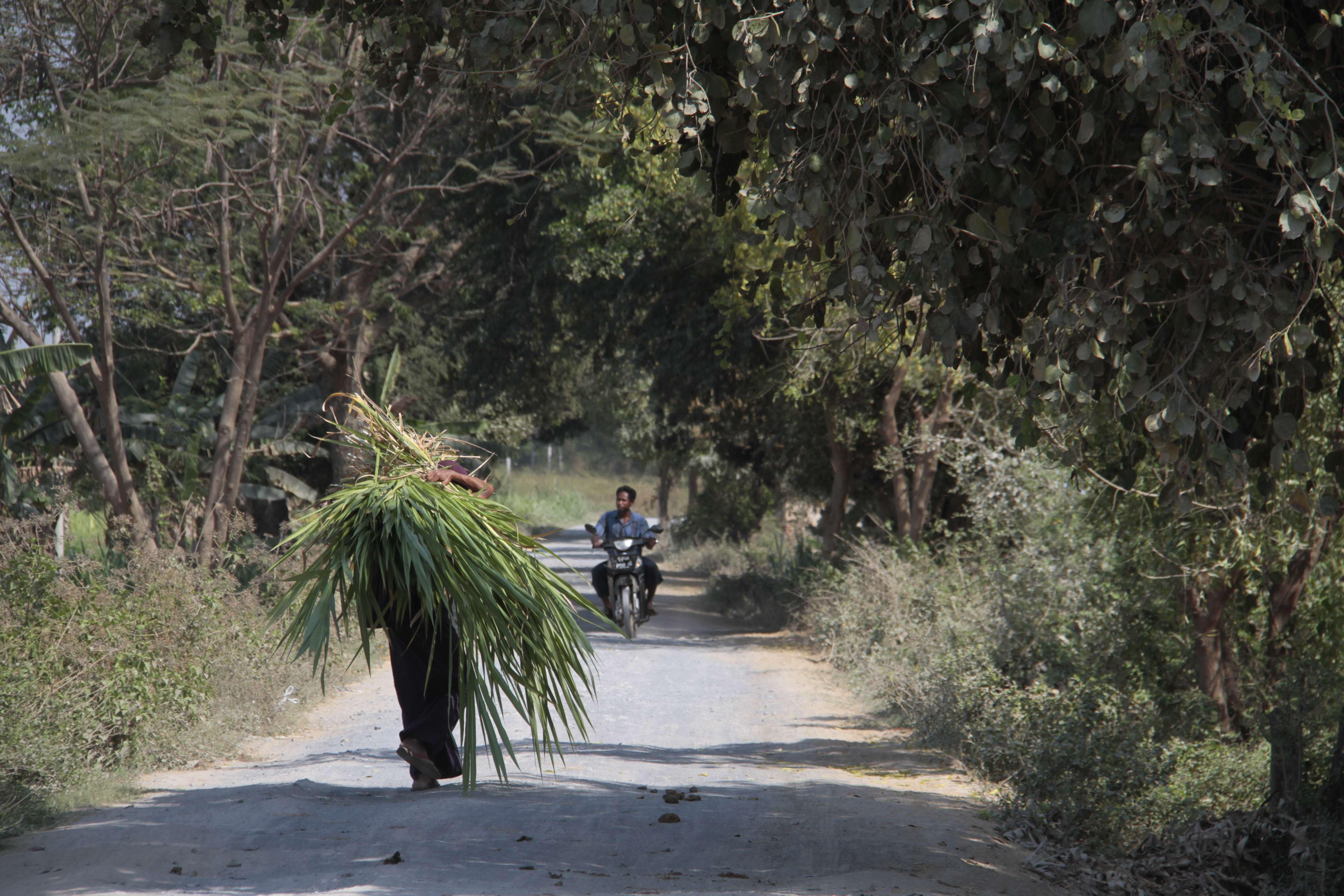 Myanmar fevrier 2019_0988 Mandalay Inwa