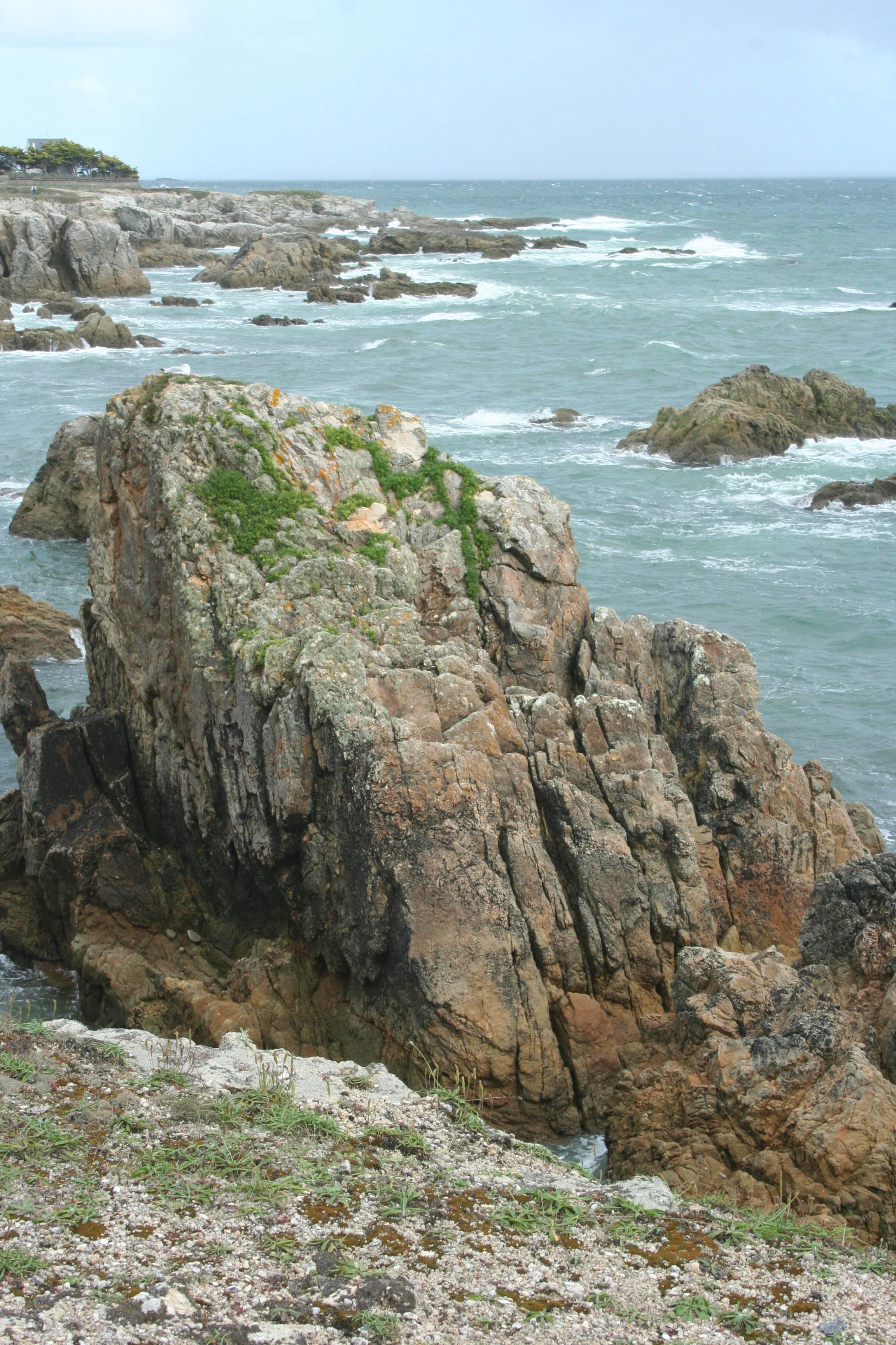 Bretagne Morbihan aout 2009 (4)