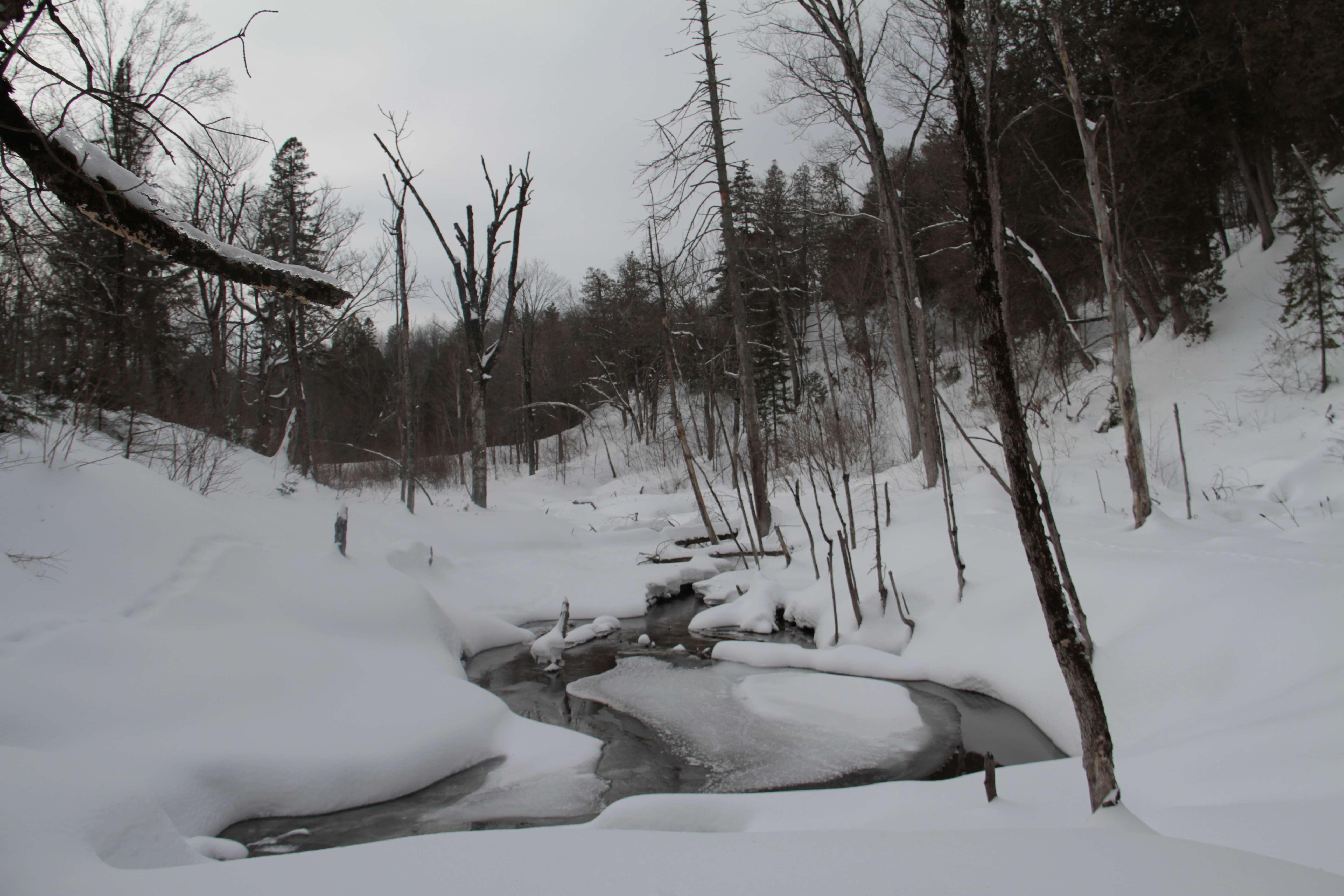 Quebec fevrier 2018_0109 chute Montmorency