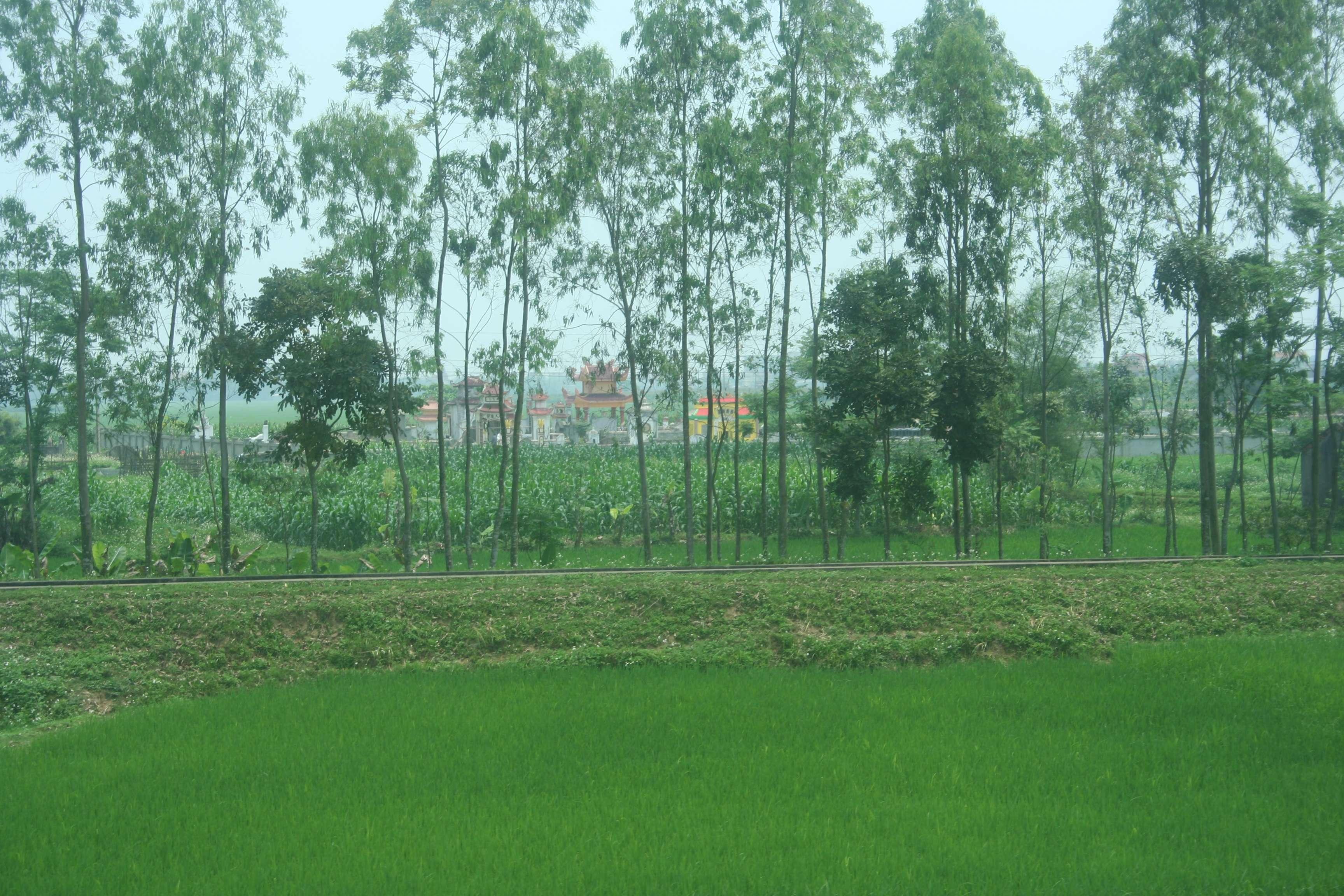 20120415_275 trajet en train Ninh Bin a Mui Ne