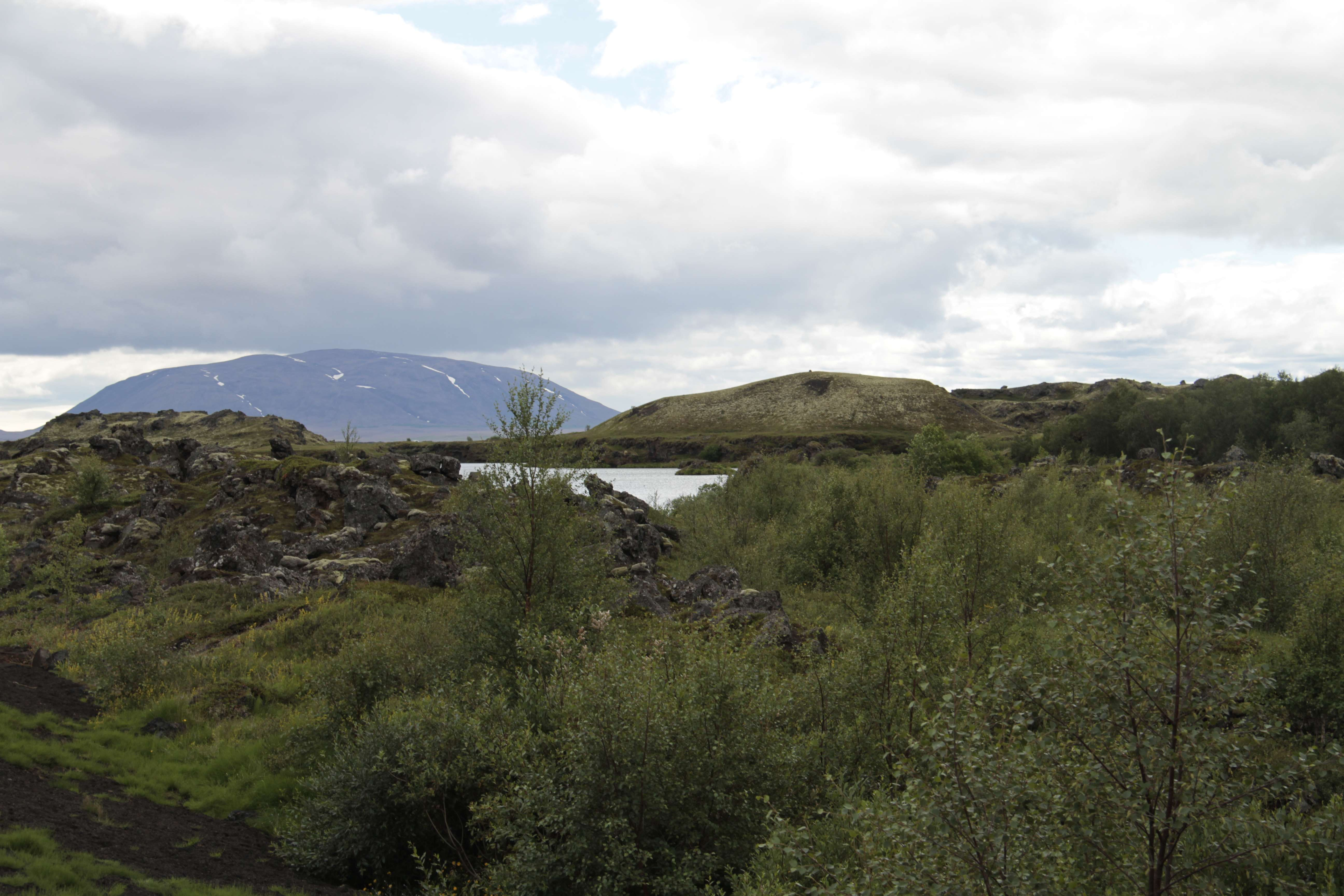 Islande_0189 rando Hofdi-Reykjahlid 12 juillet