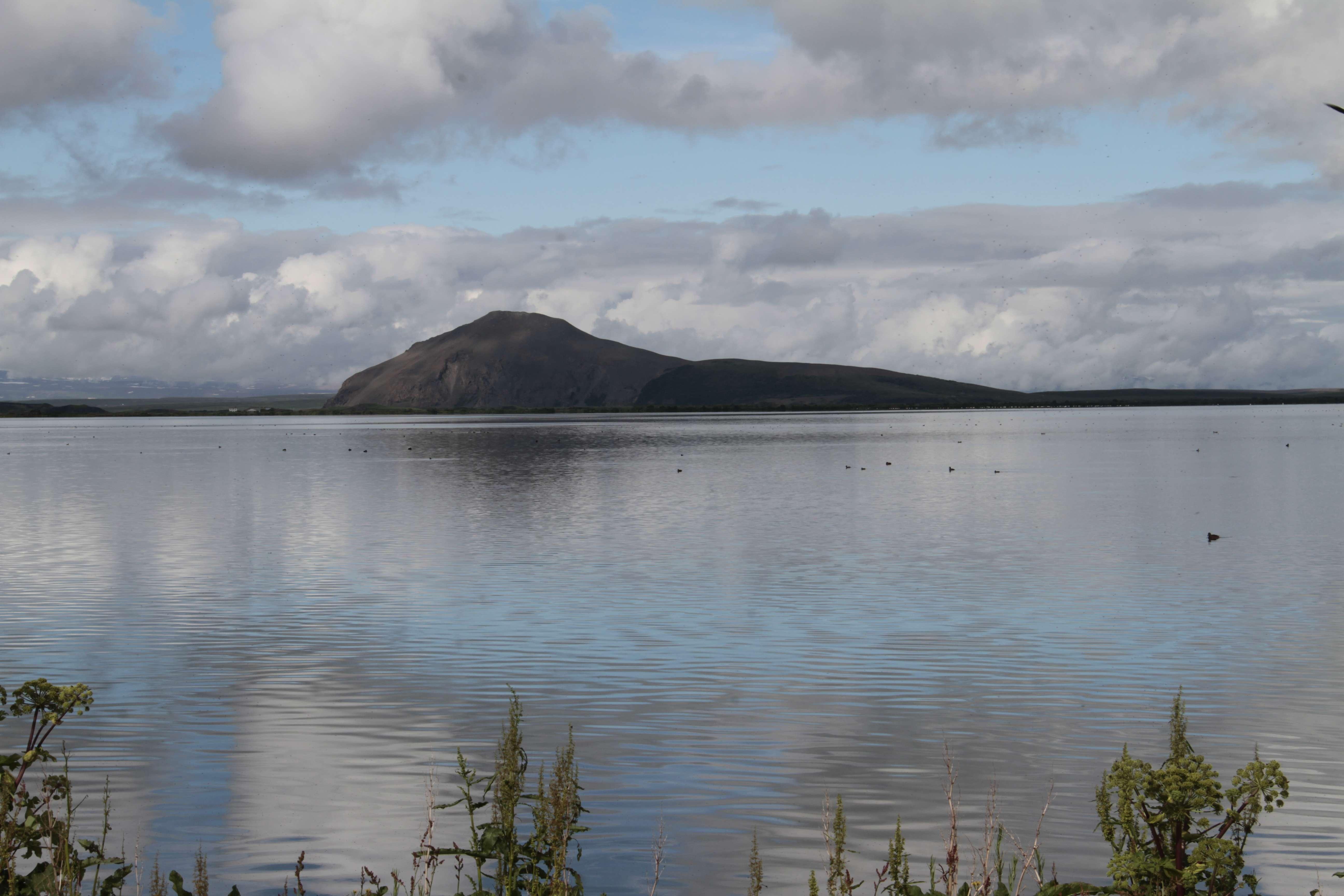 Islande_0281 lac Myvatn 12 juillet