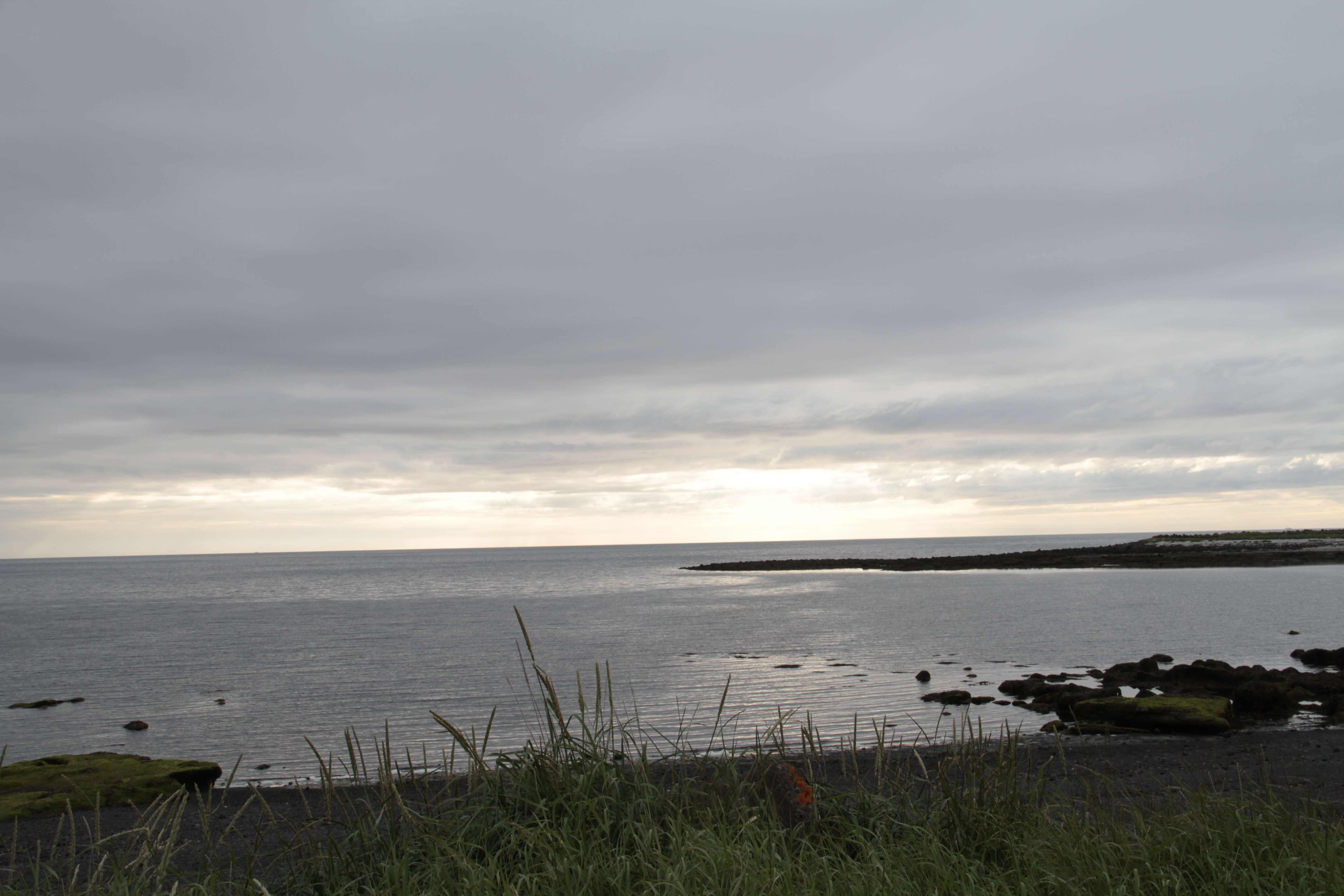 Islande_0680 Reykjavik ile grotta 20 juillet