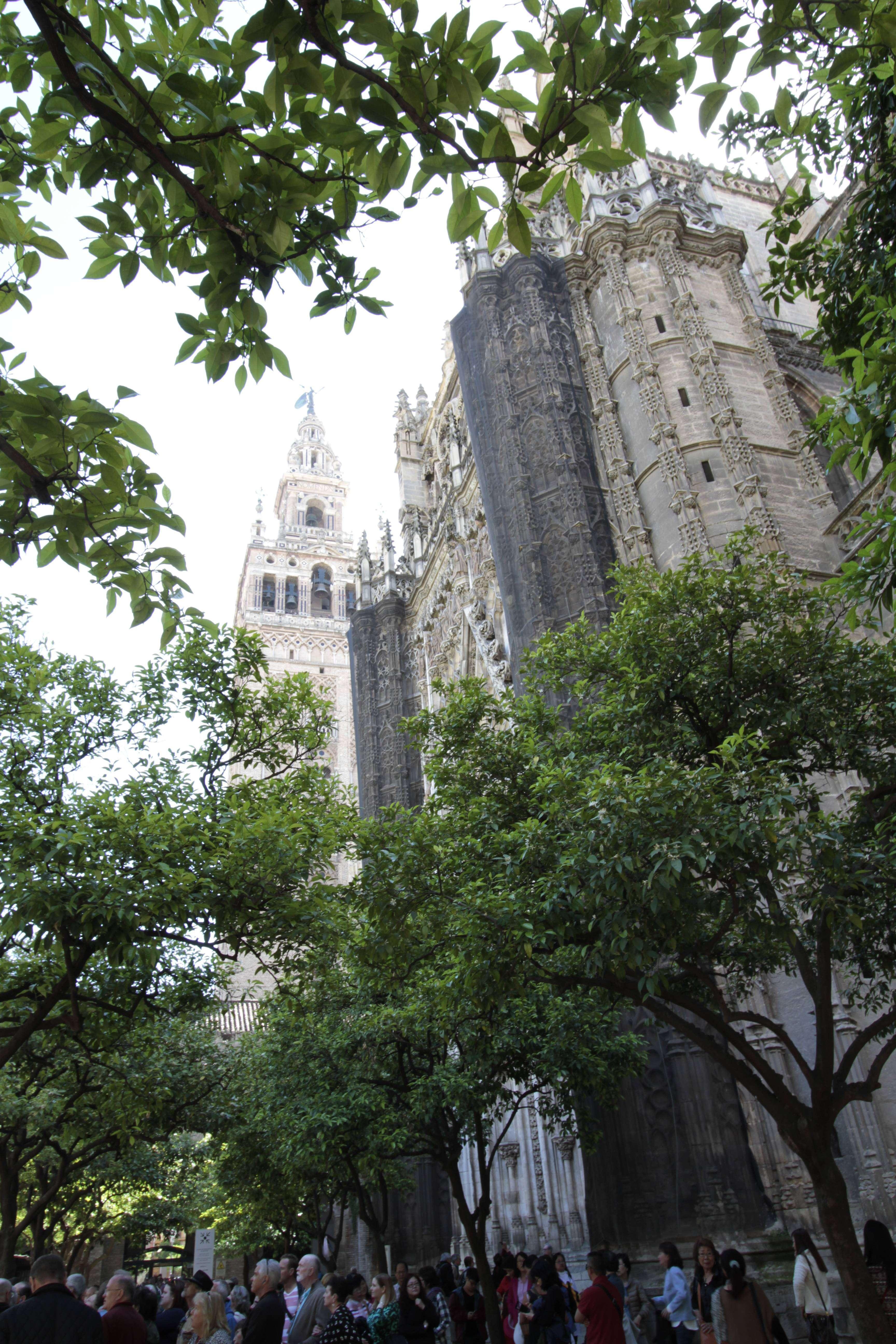 Andalousie _0034 Séville La cathedrale