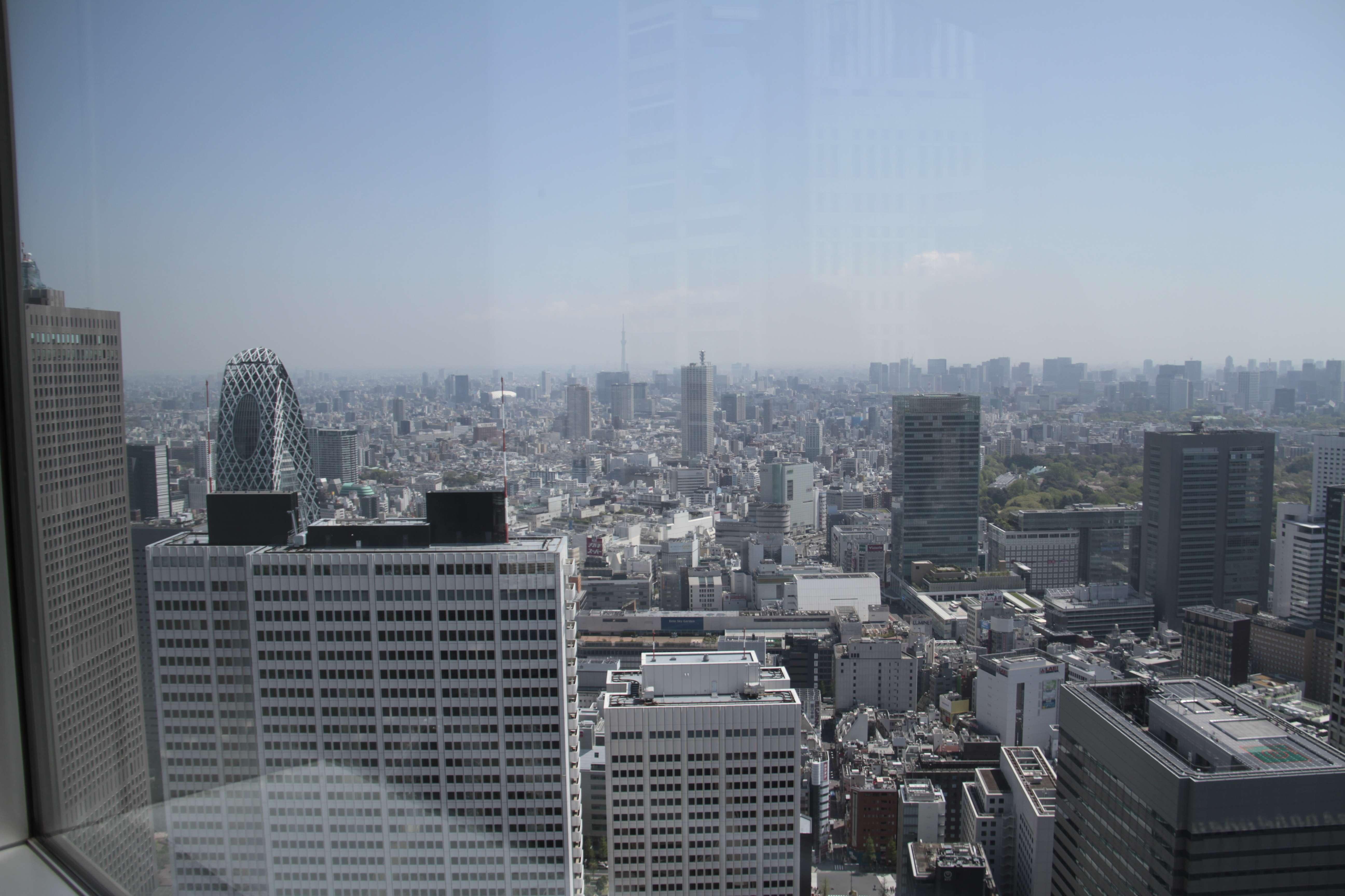Japon avril 2017_0212 Tokyo depuis Metropolitan Government Building