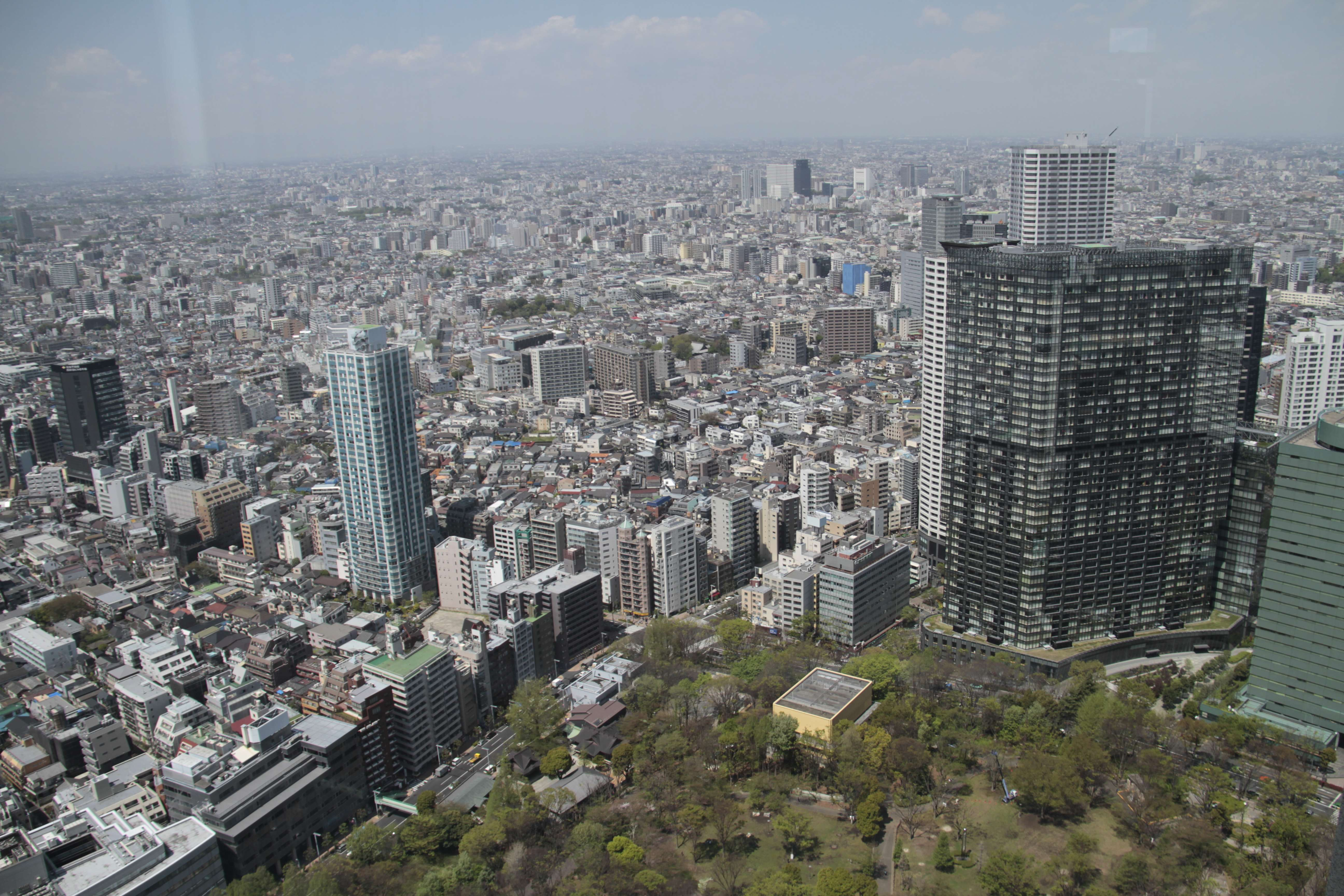 Japon avril 2017_0215 Tokyo depuis Metropolitan Government Building