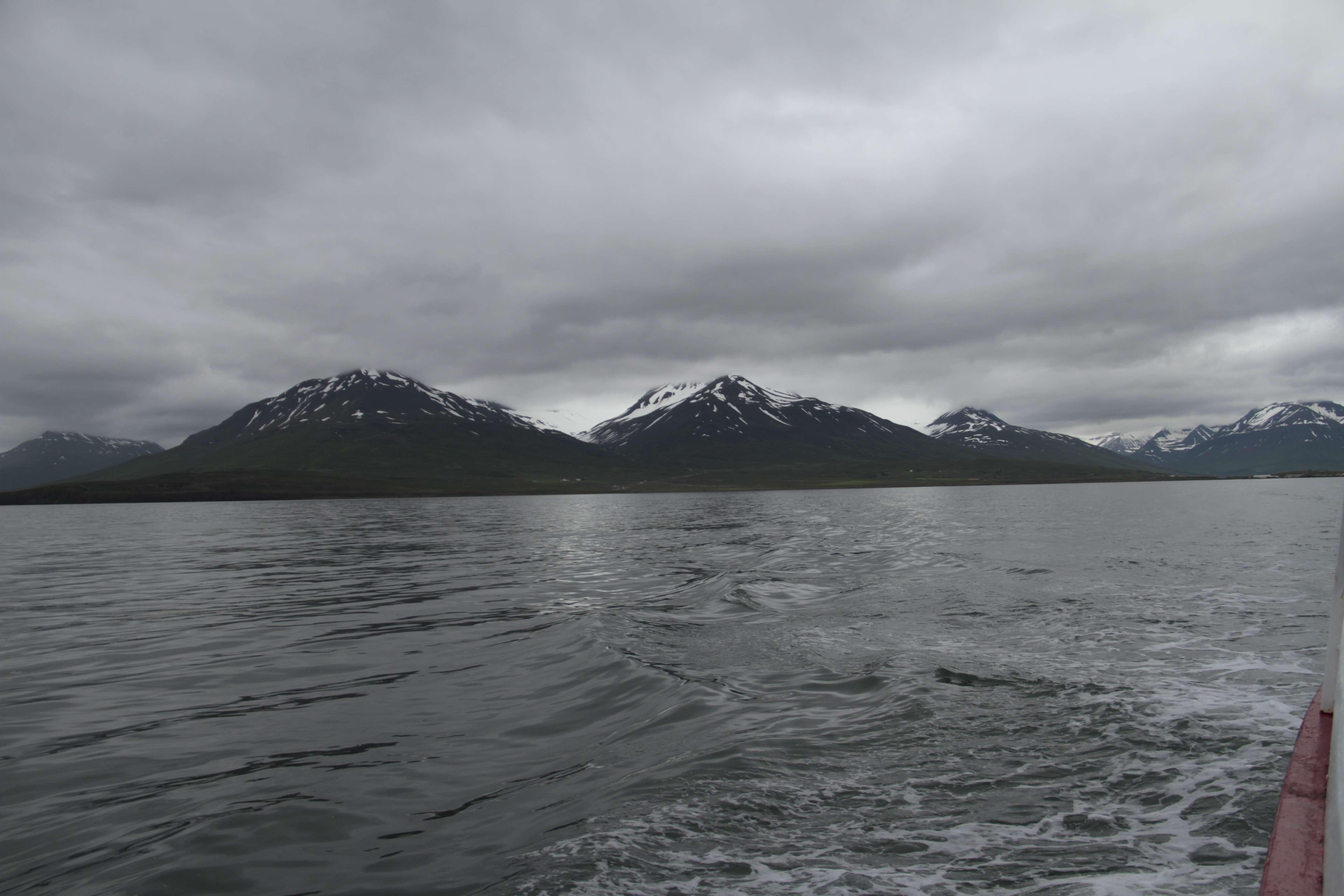 Islande_0123 Dalvik 11 juillet