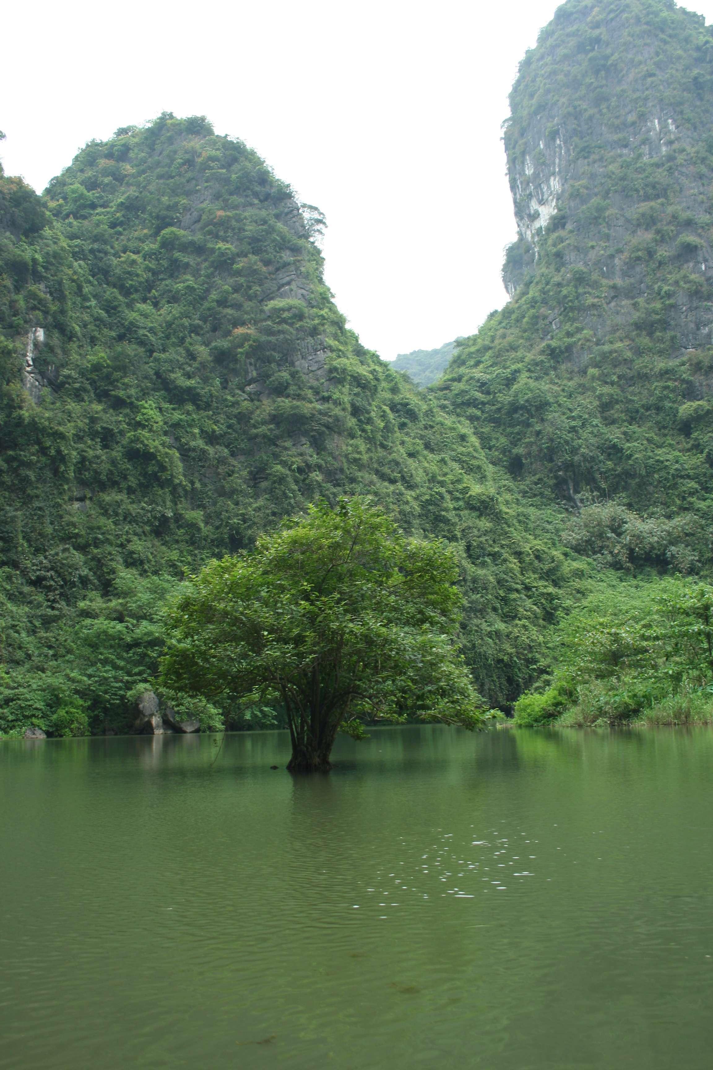 20120414_226 sortie en barque Trang An