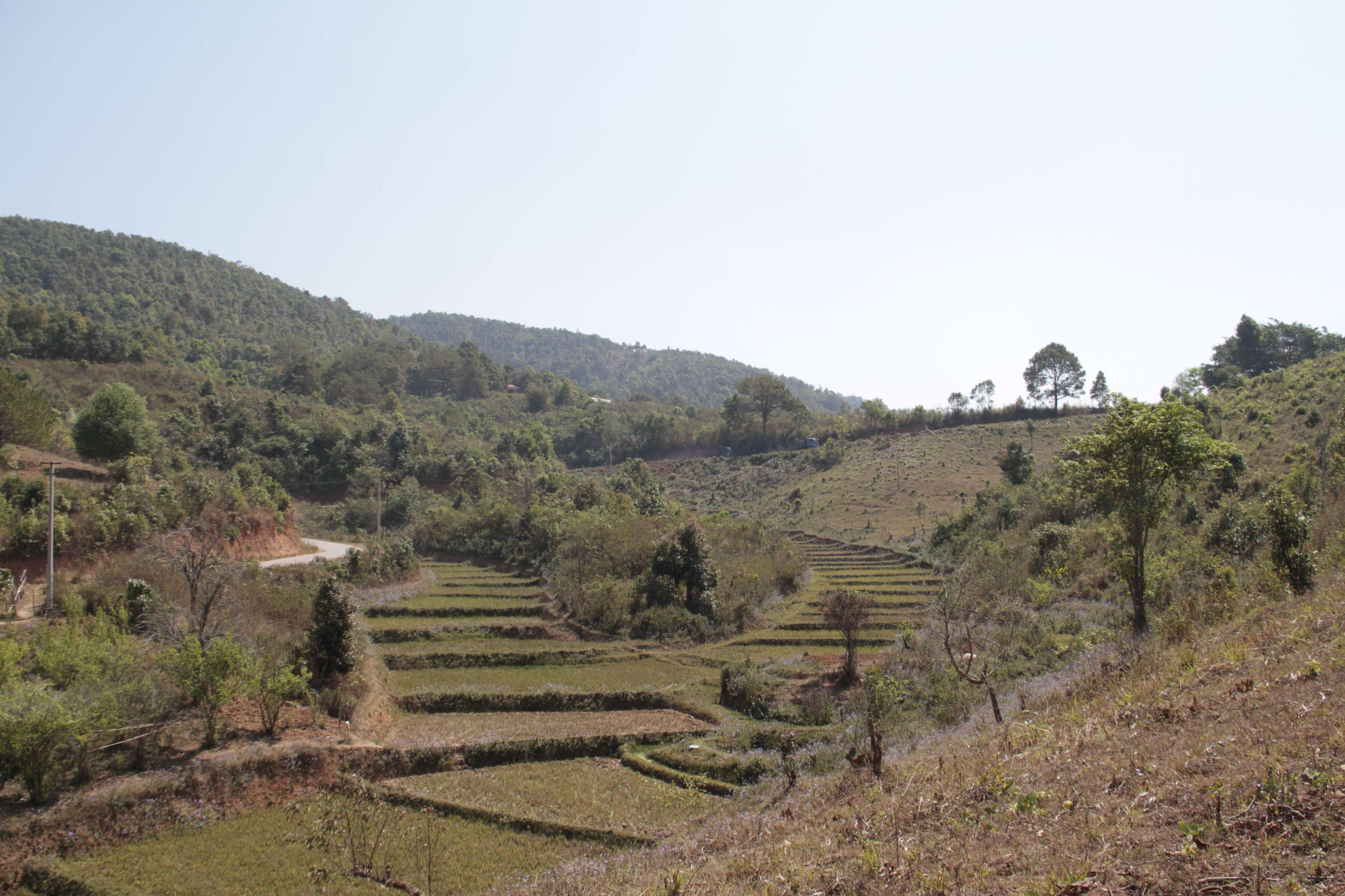 Myanmar fevrier 2019_0615 Trek Kalau Inle jour 1